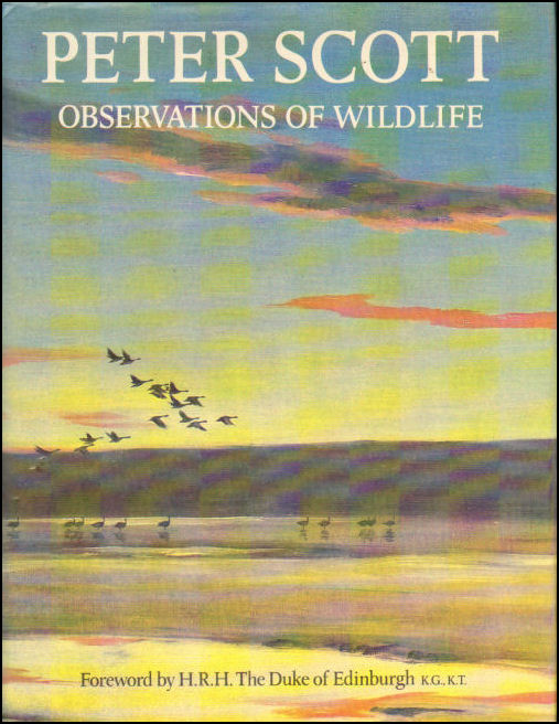 Image for Observations of Wildlife
