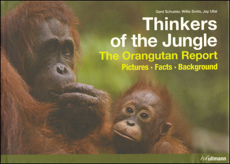 Image for Thinkers of the Jungle