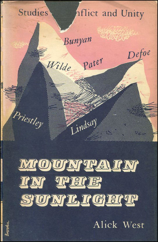 Image for The Mountain In The Sunlight: Studies In Conflict And Unity