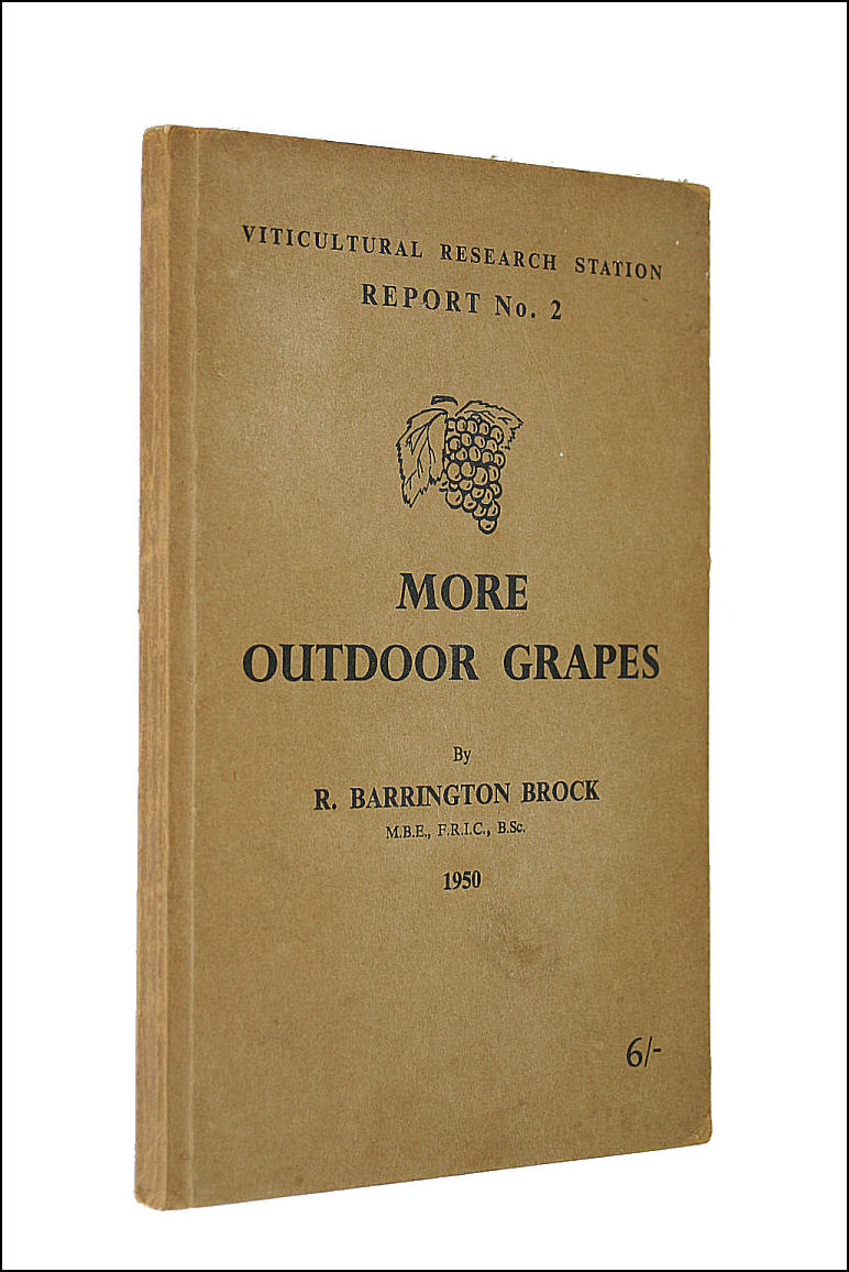 Image for More outdoor grapes (Report / Viticultural Research Station)