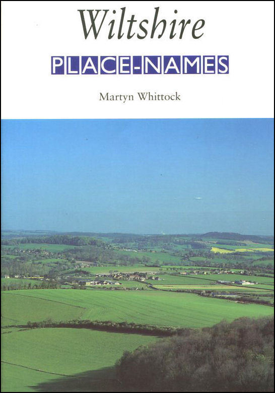Image for Wiltshire Place-Names: Their Origins and Meanings