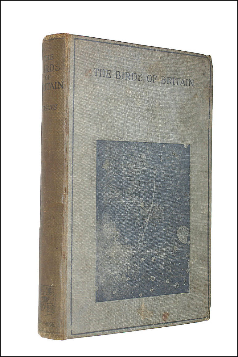 The Birds of Britain, A.H. Evans