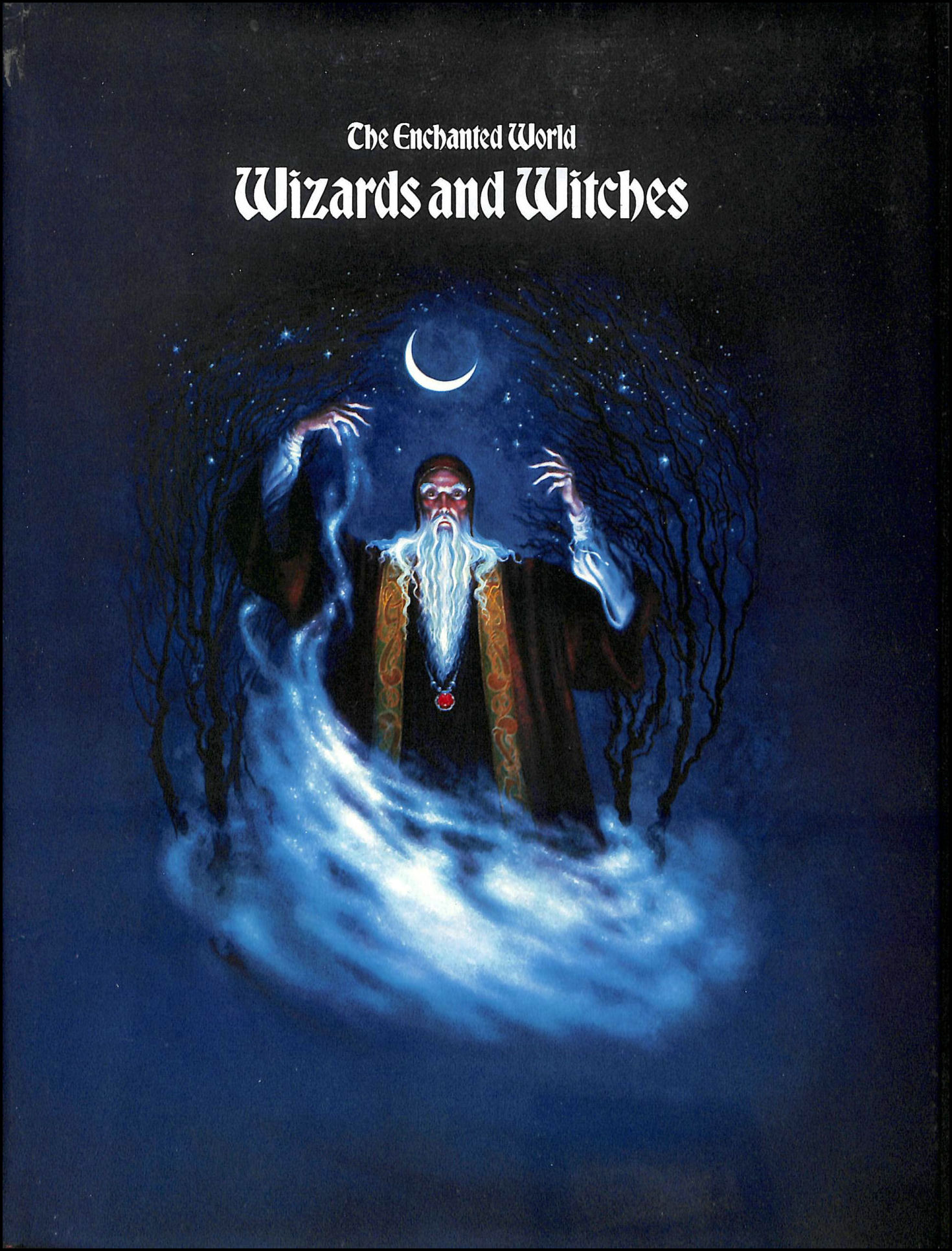 Wizards and Witches (Enchanted World), Lehane, Brendan