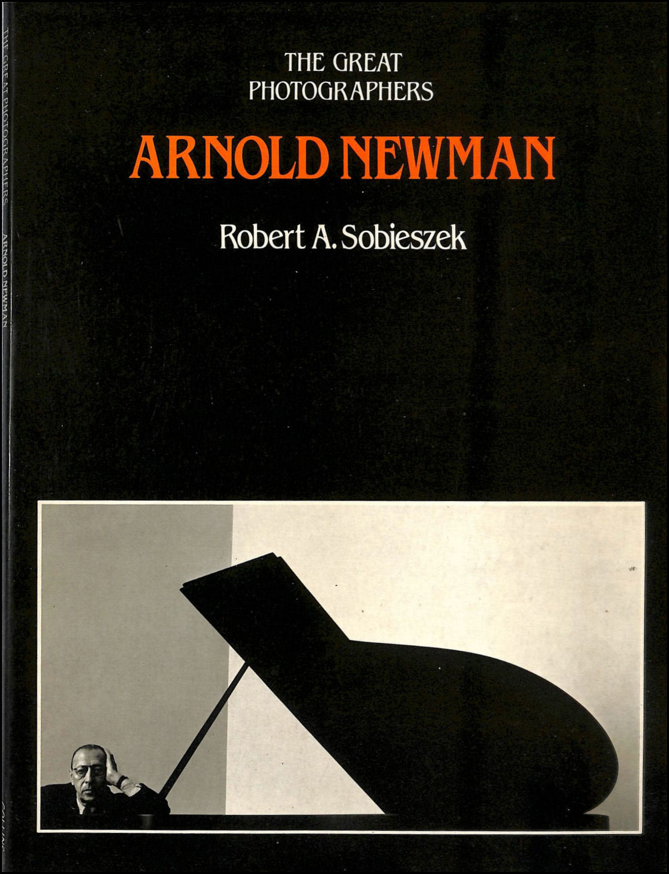 Image for Arnold Newman (The Great Photographers)