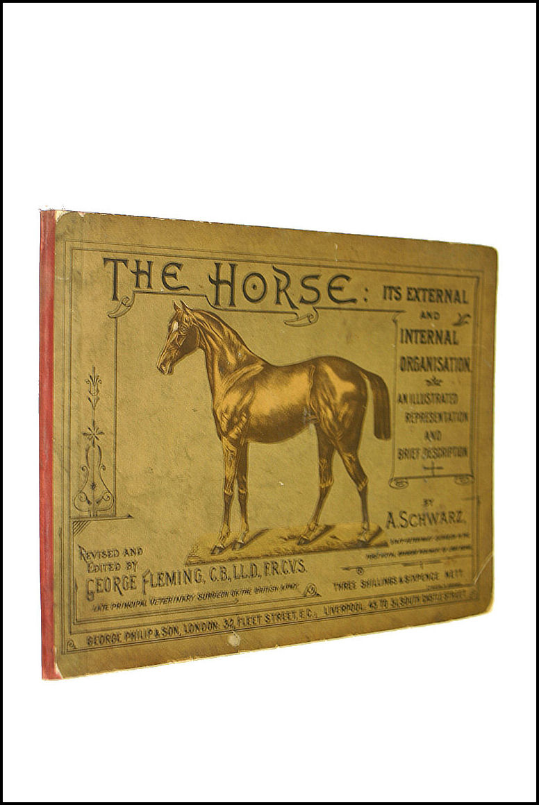The Horse: It'S External And Internal Organisation. An Illustrated Representation And Brief Description., Schwarz. A: