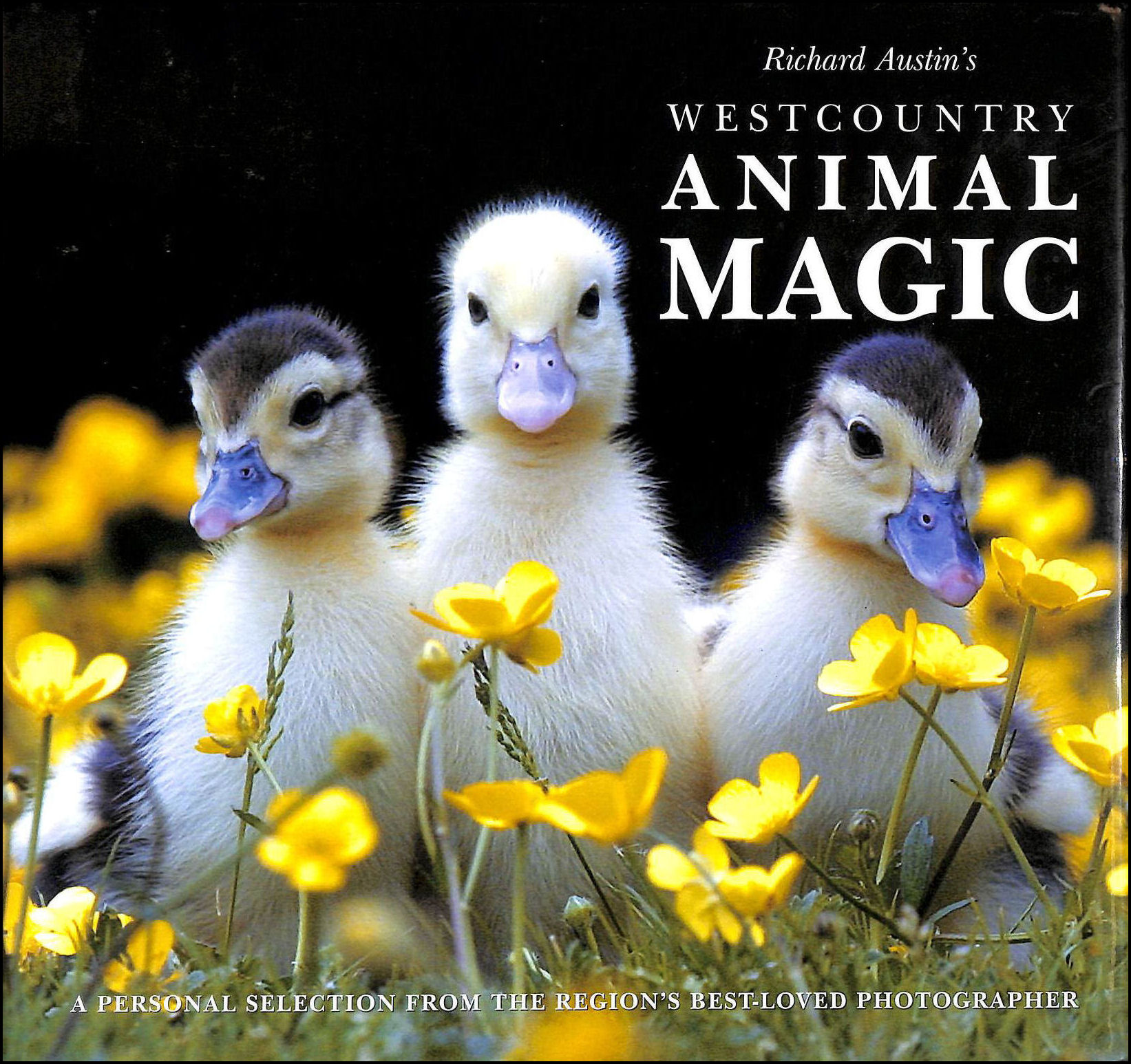 Image for Richard Austin's West Country Animal Magic