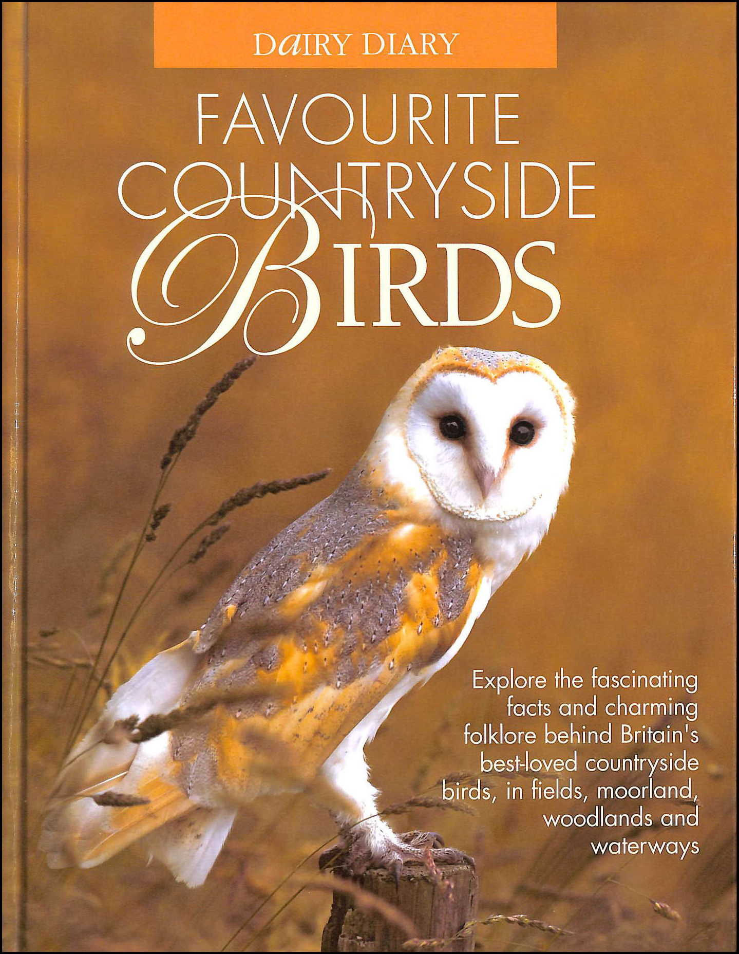 Image for Dairy Diary Favourite Countryside Birds