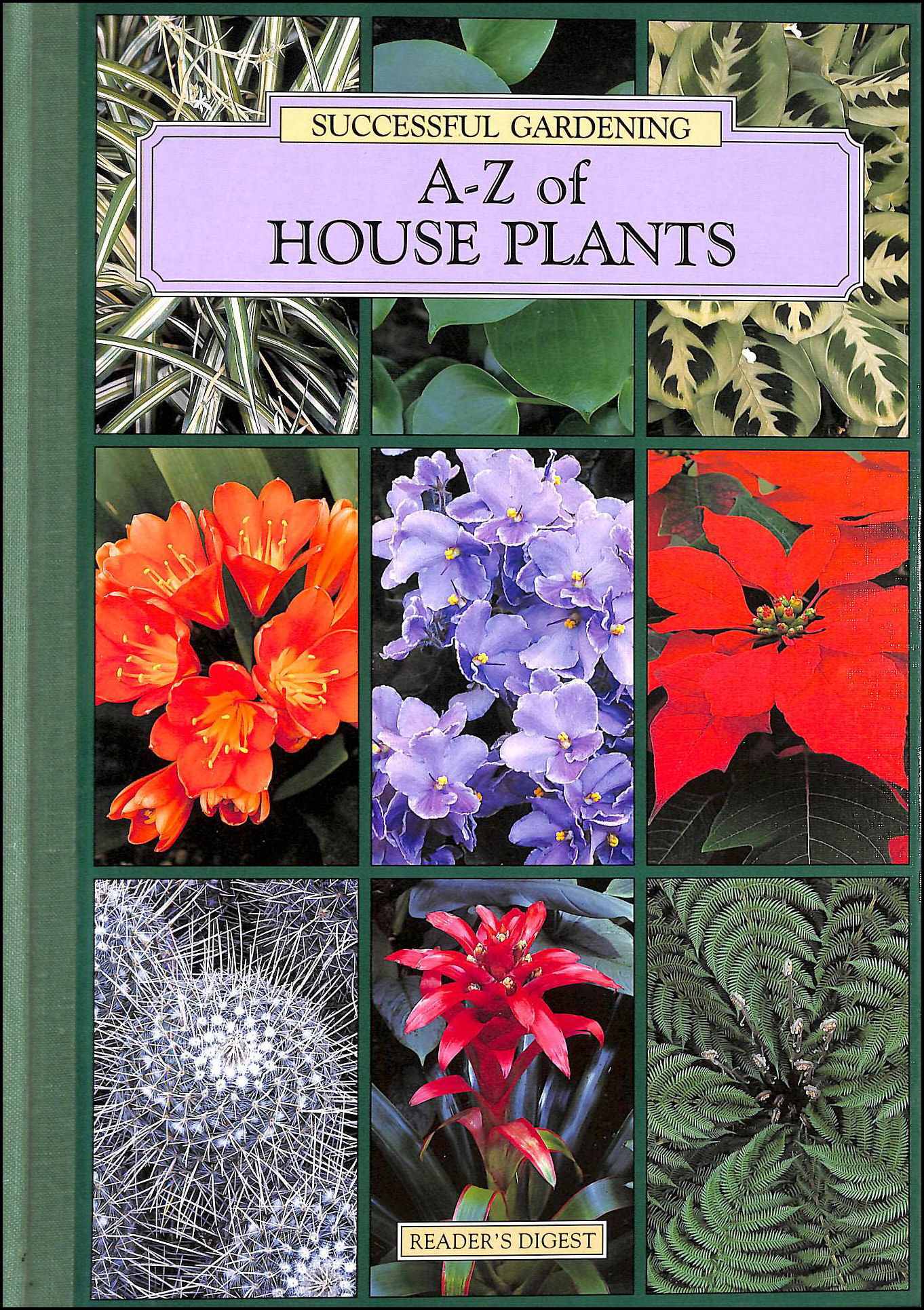 A-Z of house plants (Successful gardening)