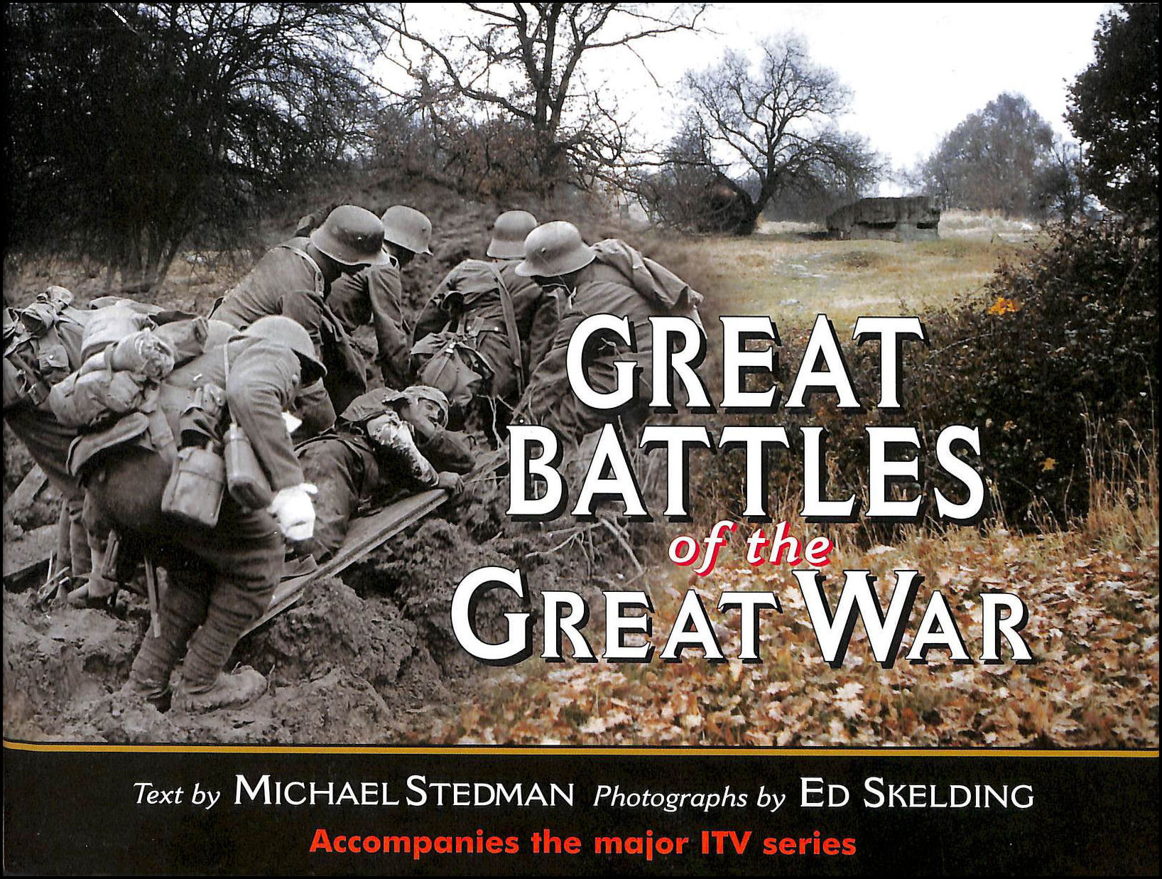 Image for Great Battles of the Great War
