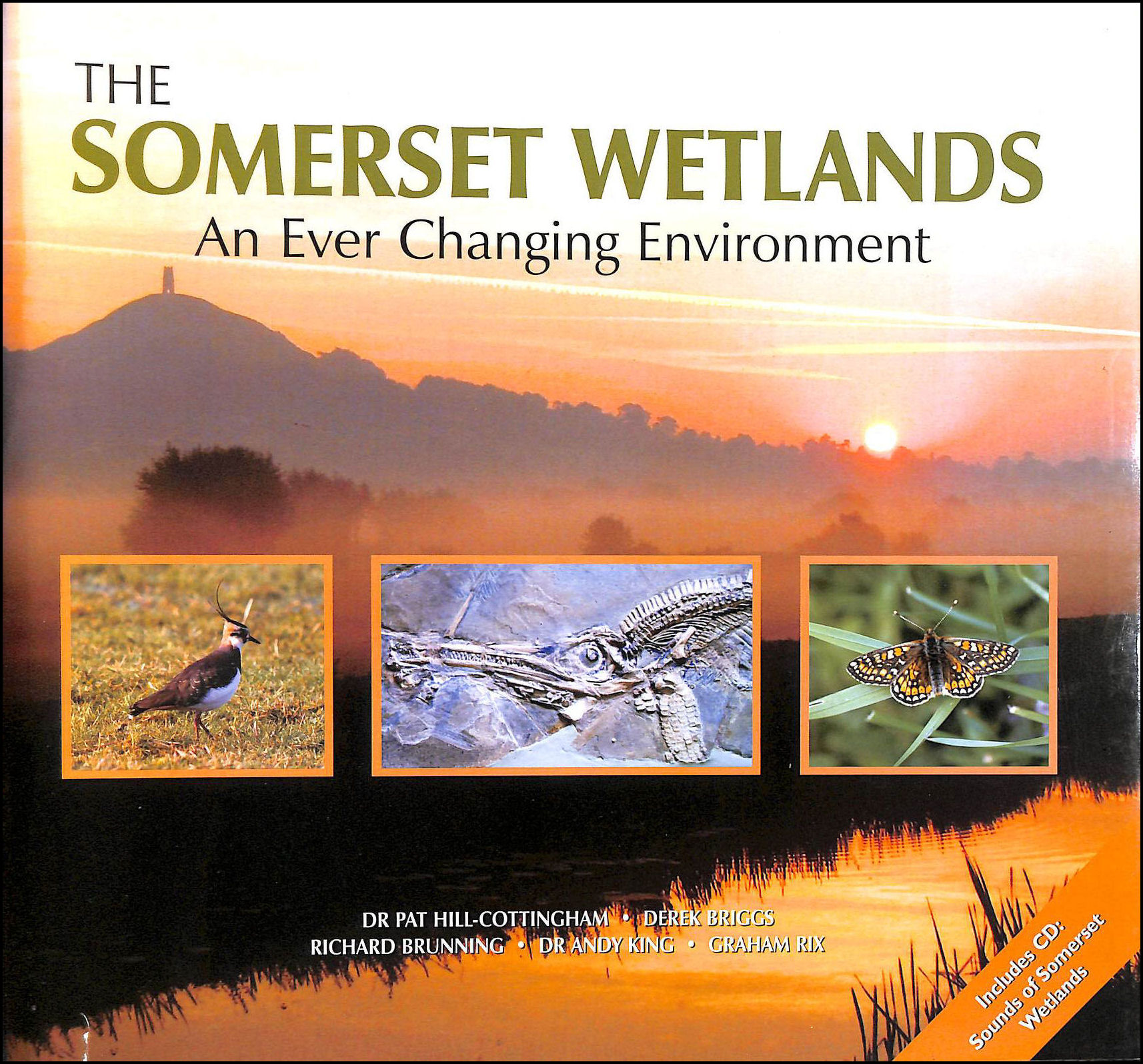 The Somerset Wetlands: An Ever Changing Environment, Hill-Cottingham, Pat [Editor]; Briggs, Derek [Editor]; Brunning, Richard [Editor]; King, Andy [Editor]; Rix, Graham [Editor];