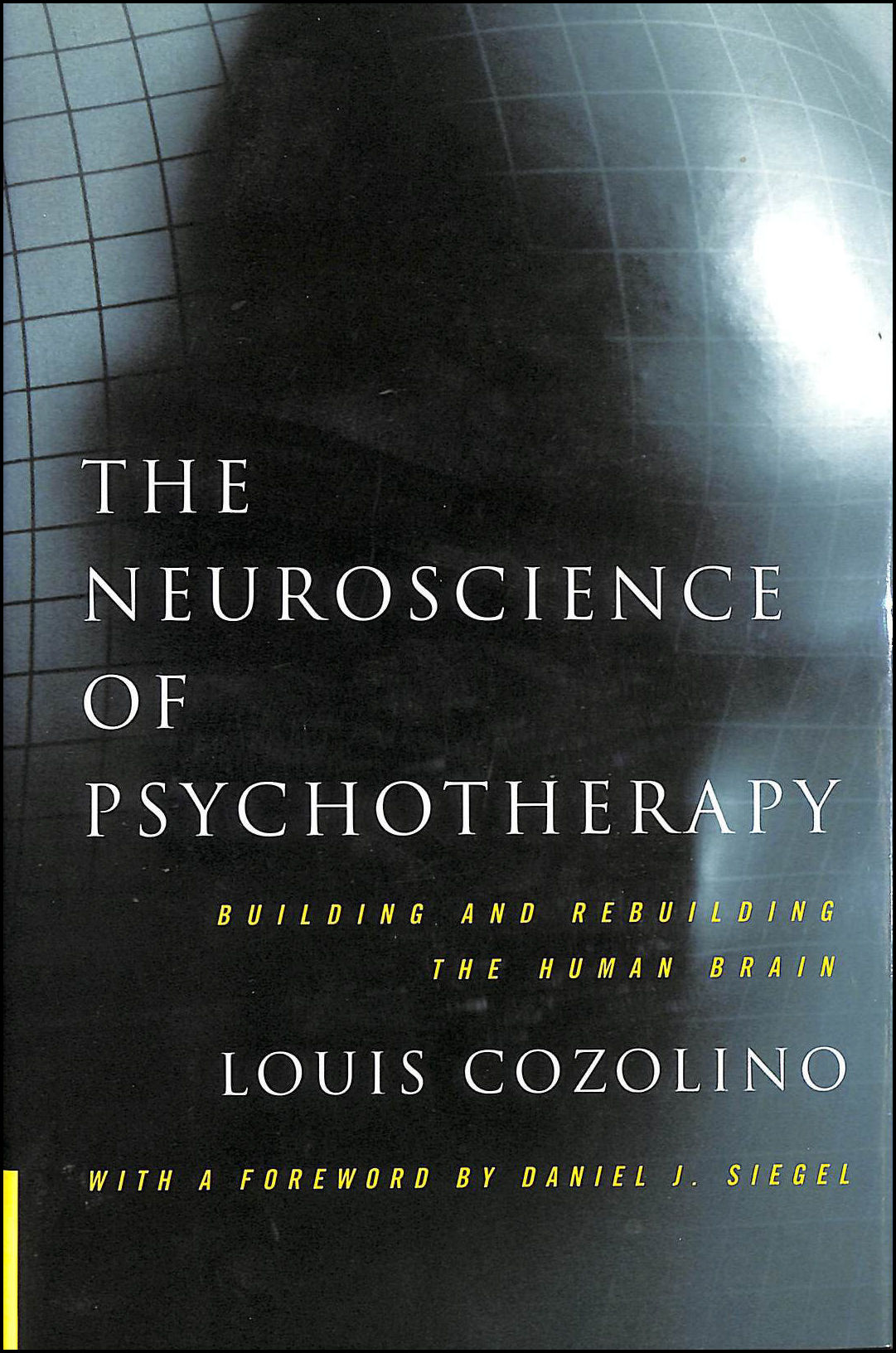 The Neuroscience of Psychotherapy: Building and Rebuilding the Human Brain, Cozolino, Louis