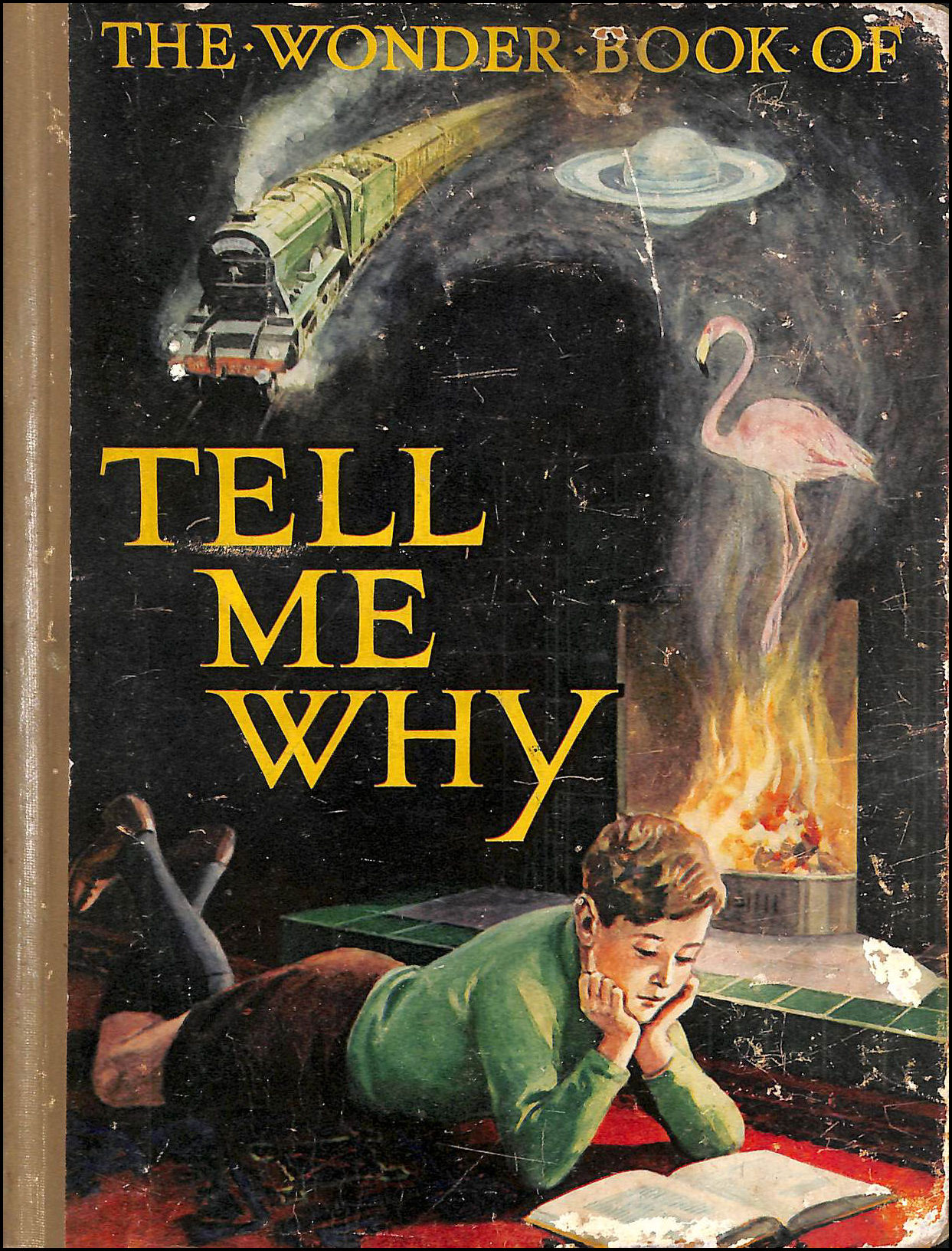 The Wonder Book Of Tell Me Why?, Golding, Harry