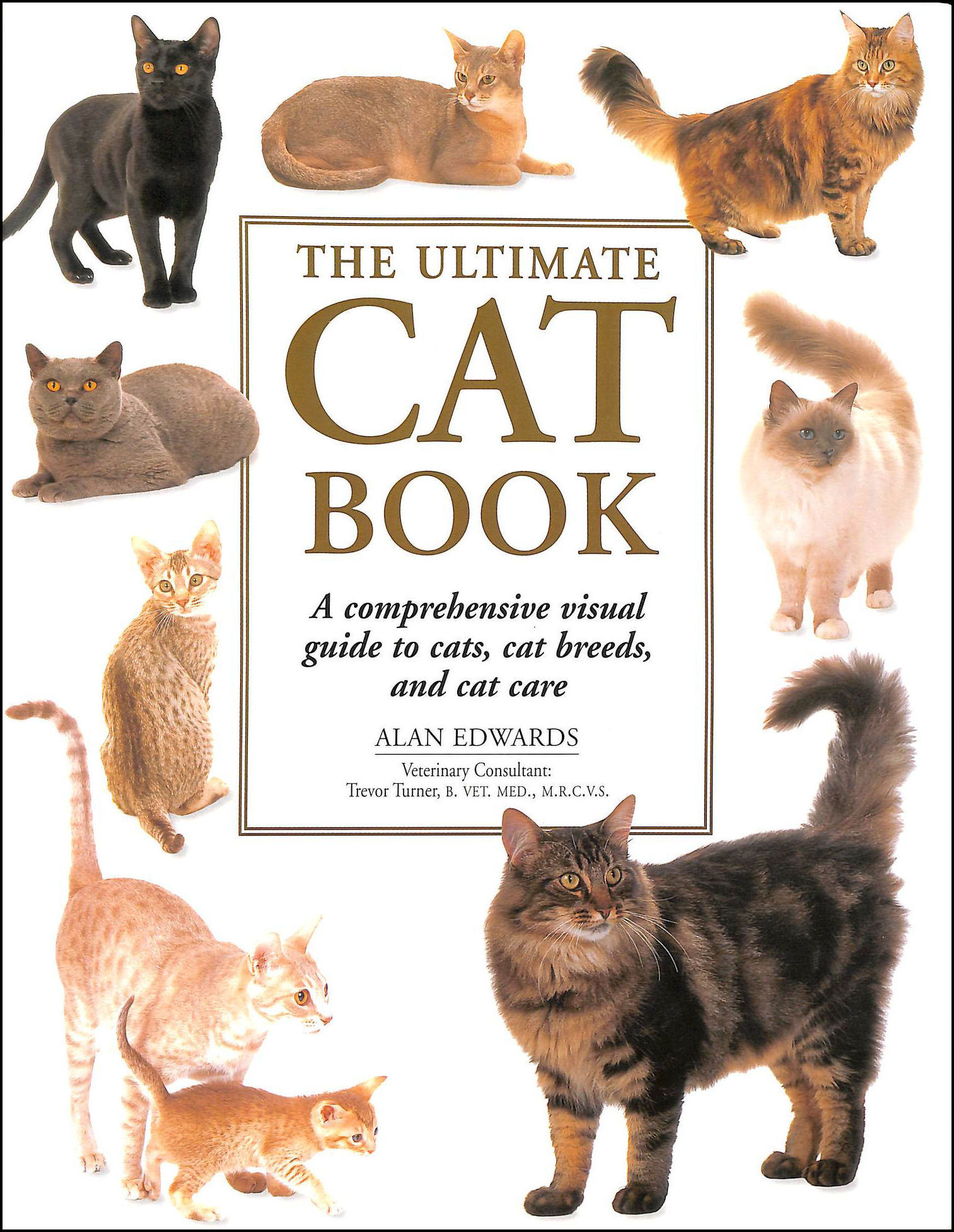The Ultimate Cat Book, Alan Edwards