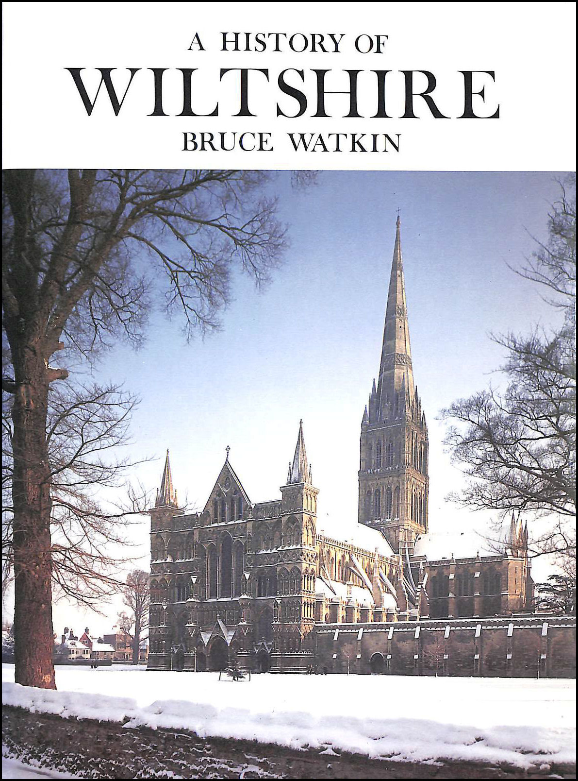 Image for A History of Wiltshire
