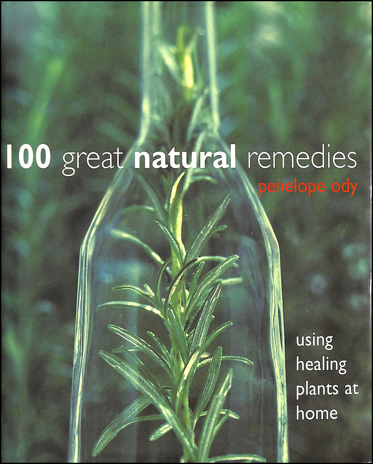Image for 100 Great Natural Remedies: Using Healing Plants At Home