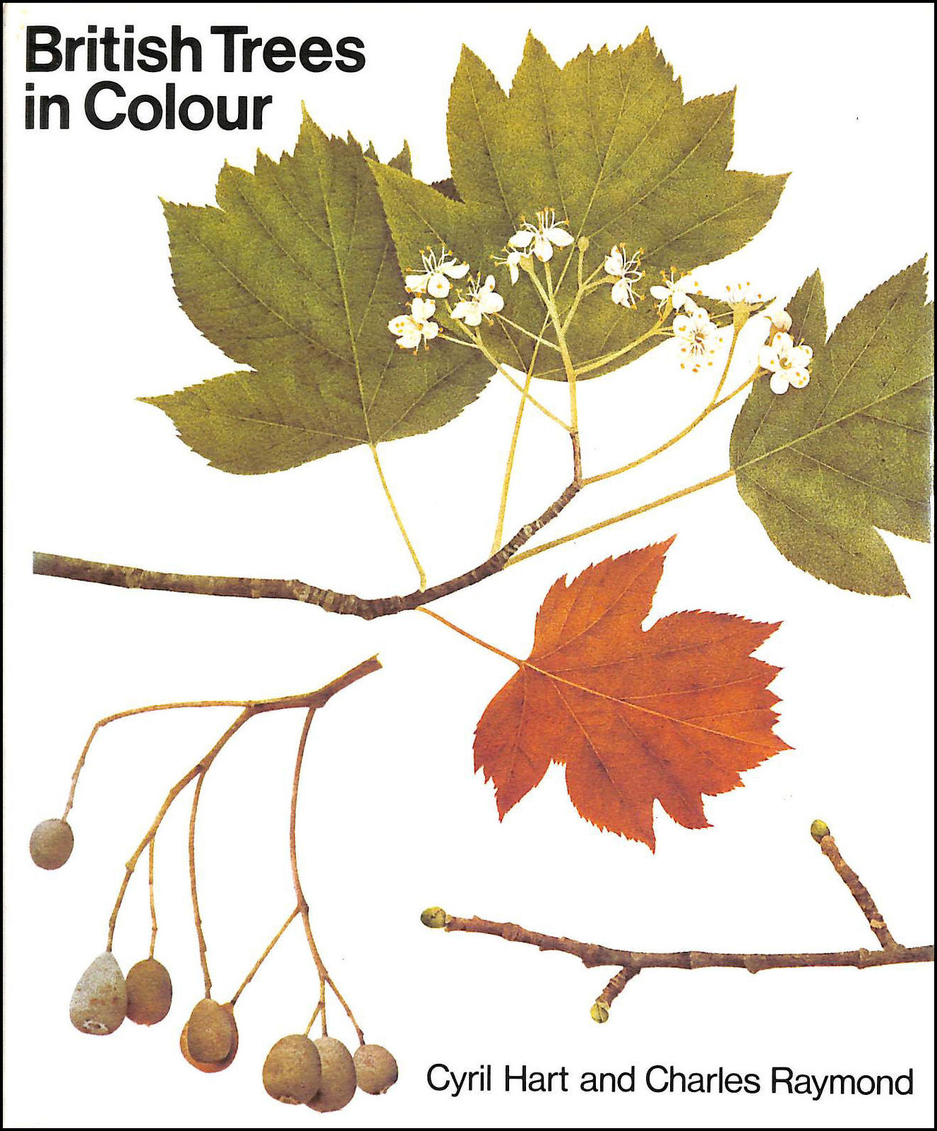 British Trees in Colour, Hart, Cyril and Charles Raymond