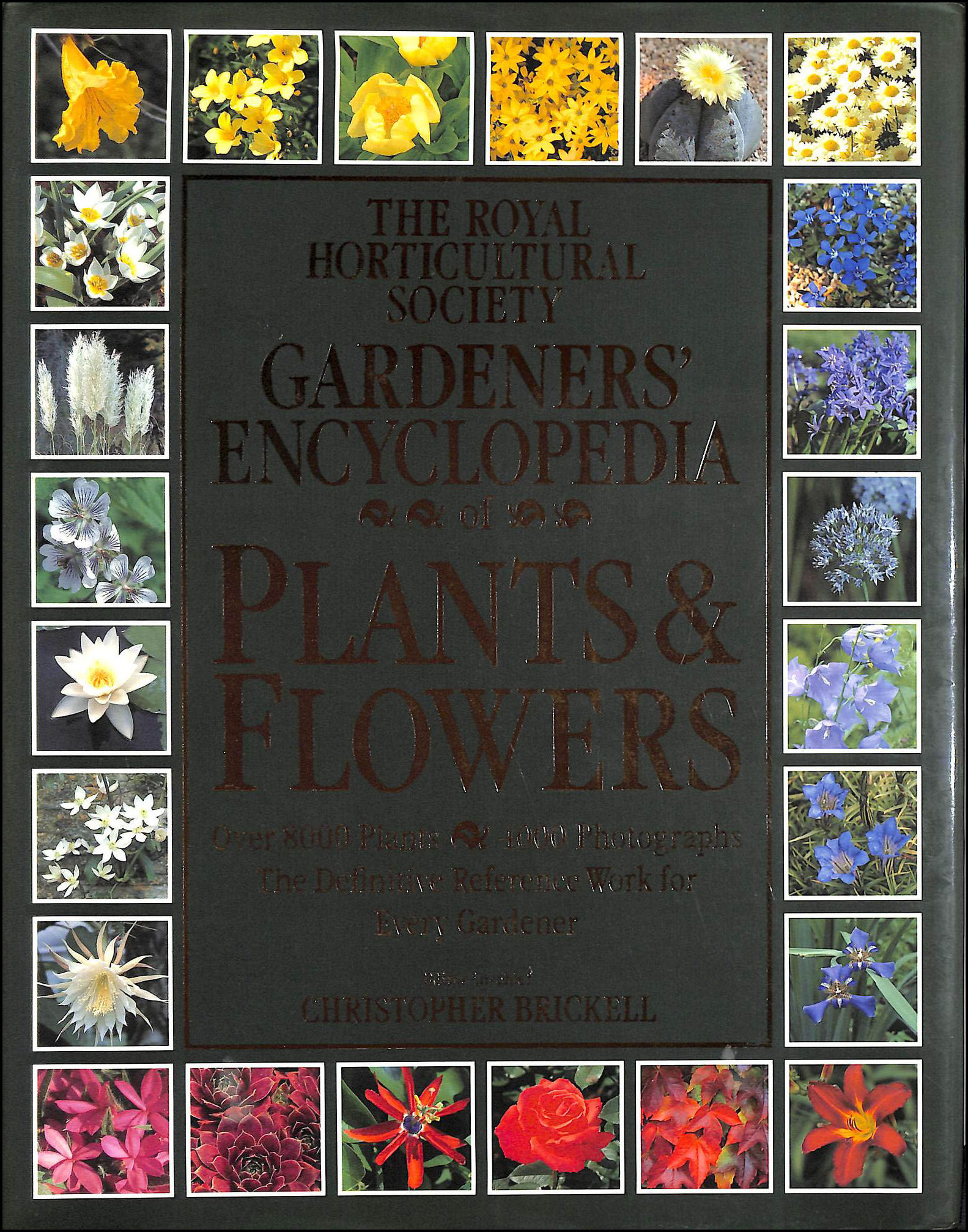 Royal Horticultural Society Gardeners' Encyclopedia of Plants and Flowers, Brickell, Christopher (editor-in-chief)