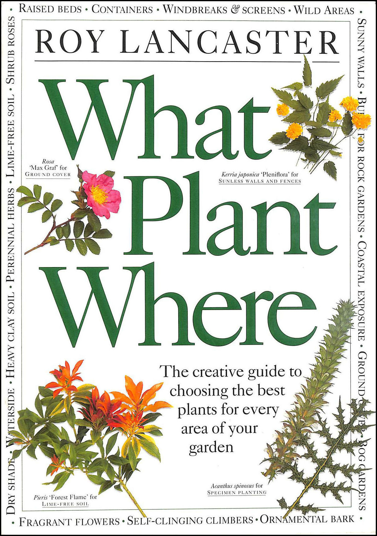 Image for What Plant Where: The Creative Guide to Choosing the Best Plants for Every Area of Your Garden