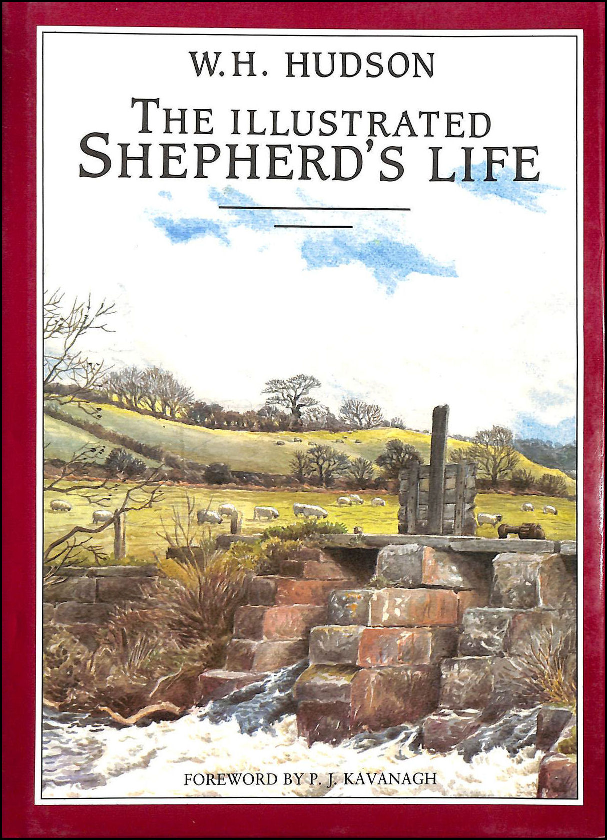 Image for The Illustrated Shepherd's Life
