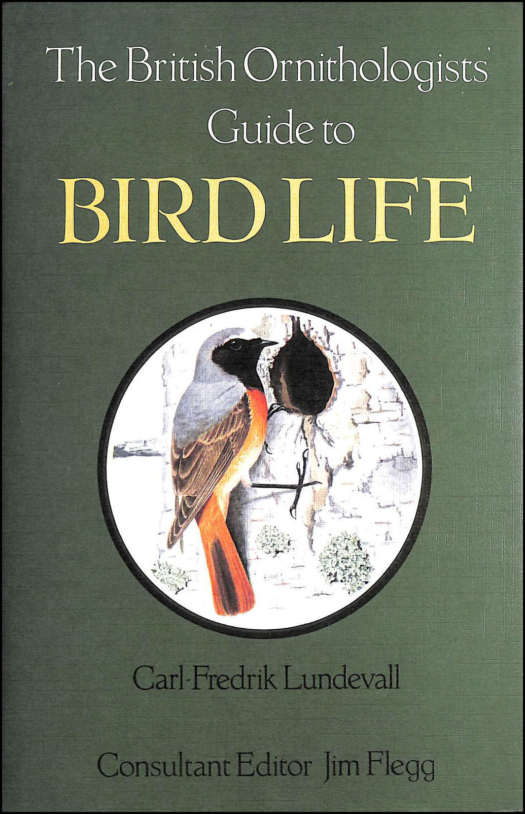 Image for British Ornithologist's Guide to Bird Life