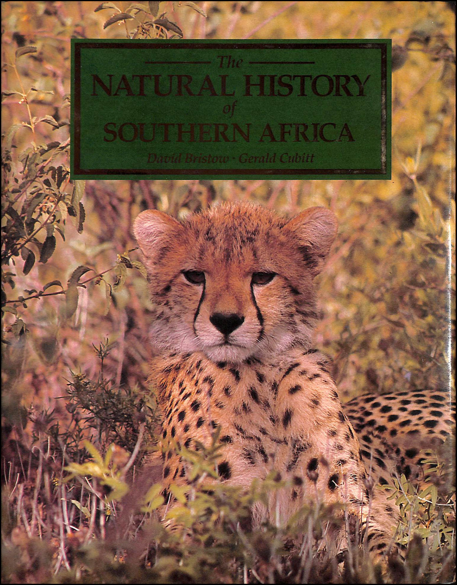 Image for The Natural History Of Southern Africa