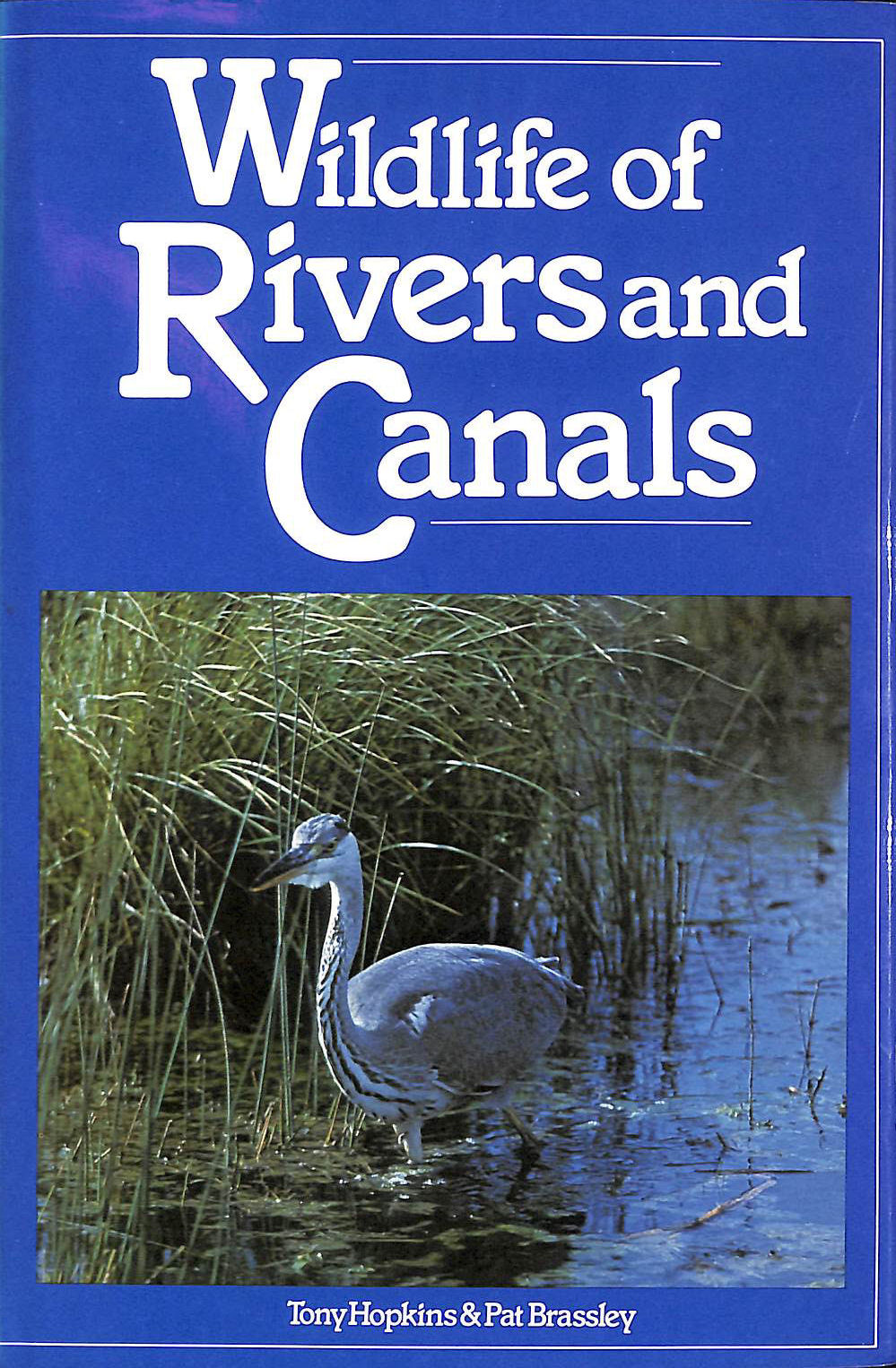 Image for Wildlife of Rivers and Canals