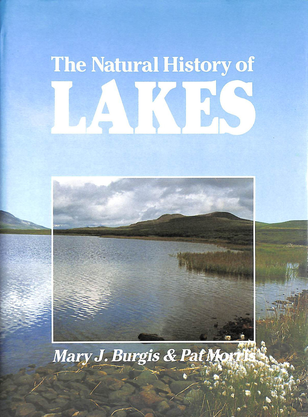 Image for The Natural History of Lakes
