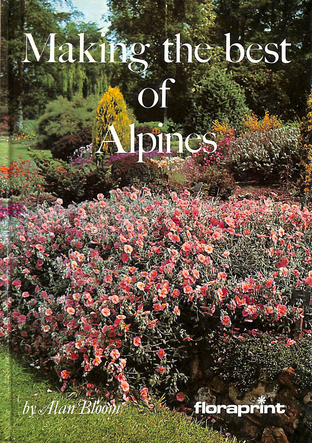 Image for Making the Best of Alpines