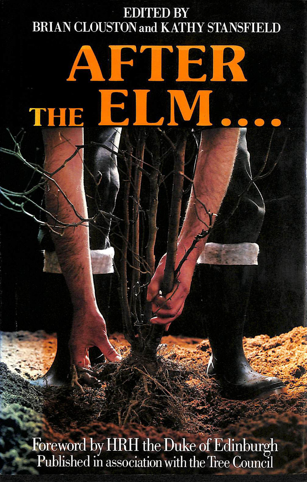 Image for After the Elm,