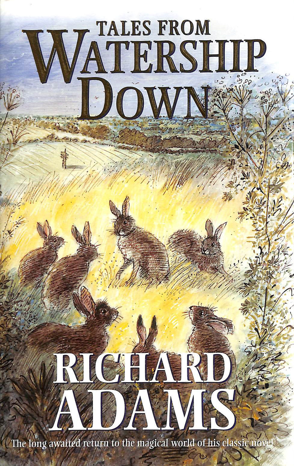 Image for Tales from Watership Down
