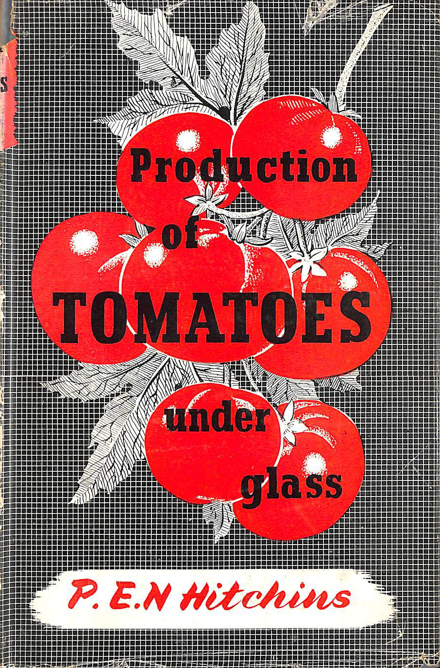 Image for Production of Tomatoes under Glass. With plates