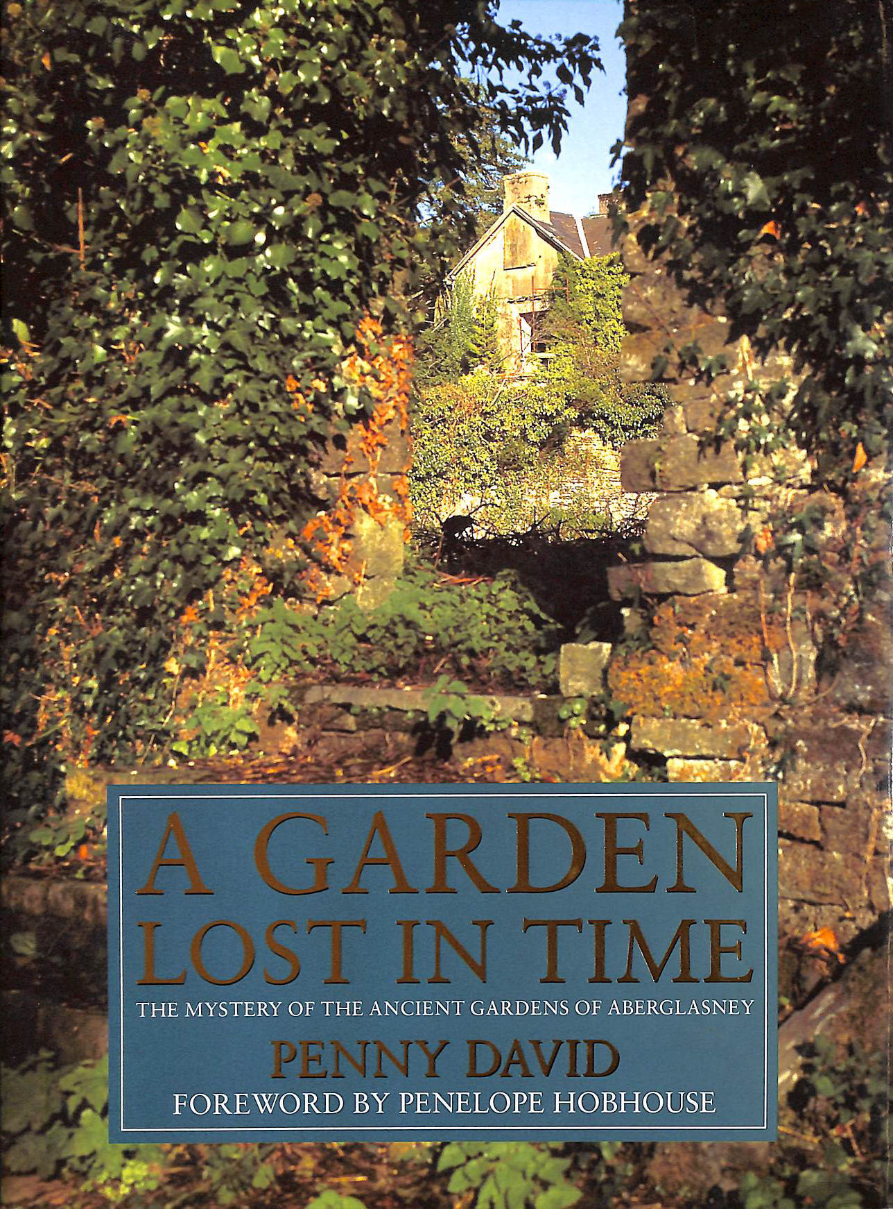 Image for A Garden Lost In Time: Mystery of the Ancient Gardens of Aberglasney