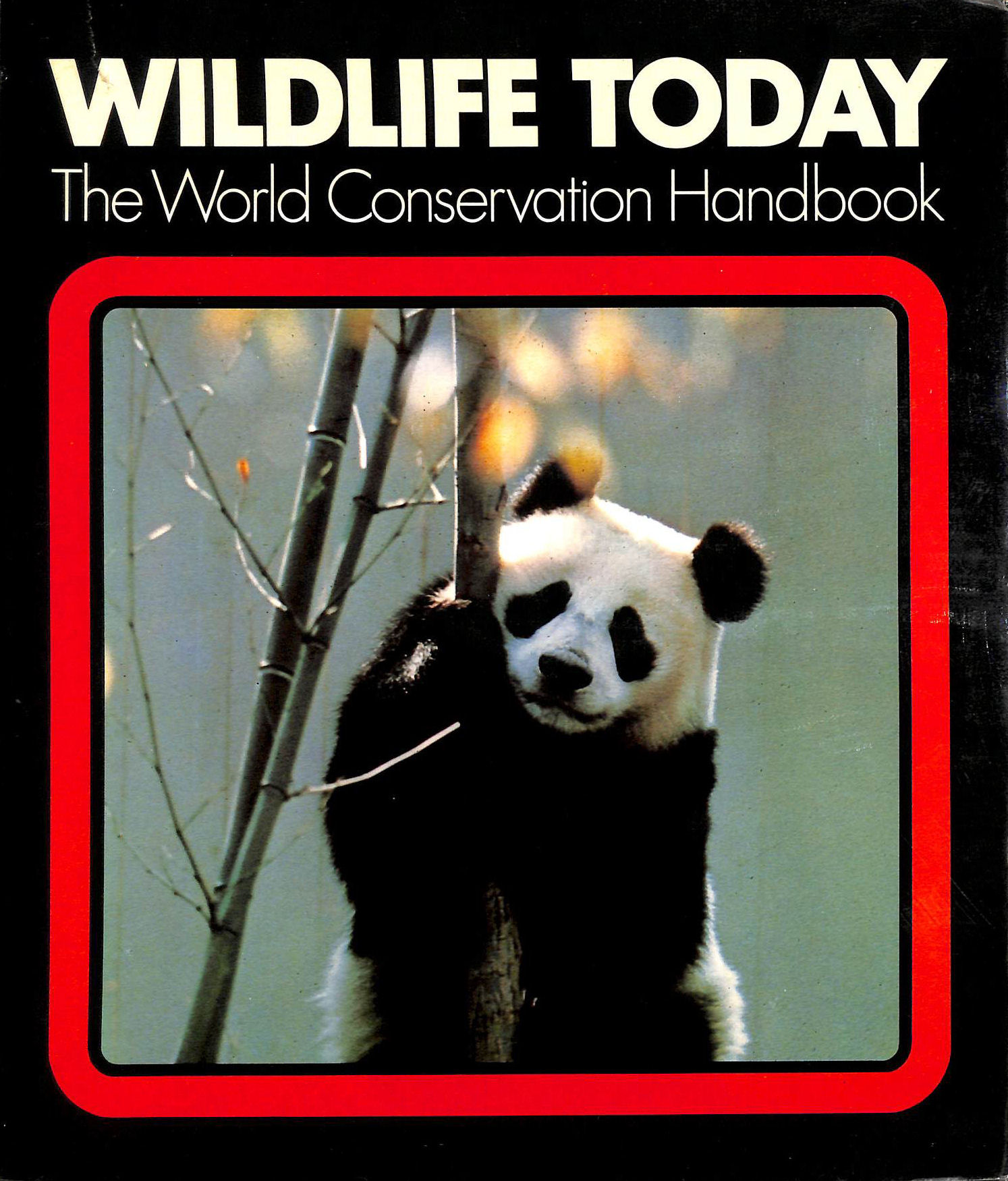 Image for Wild Life Today: World Conservation Handbook