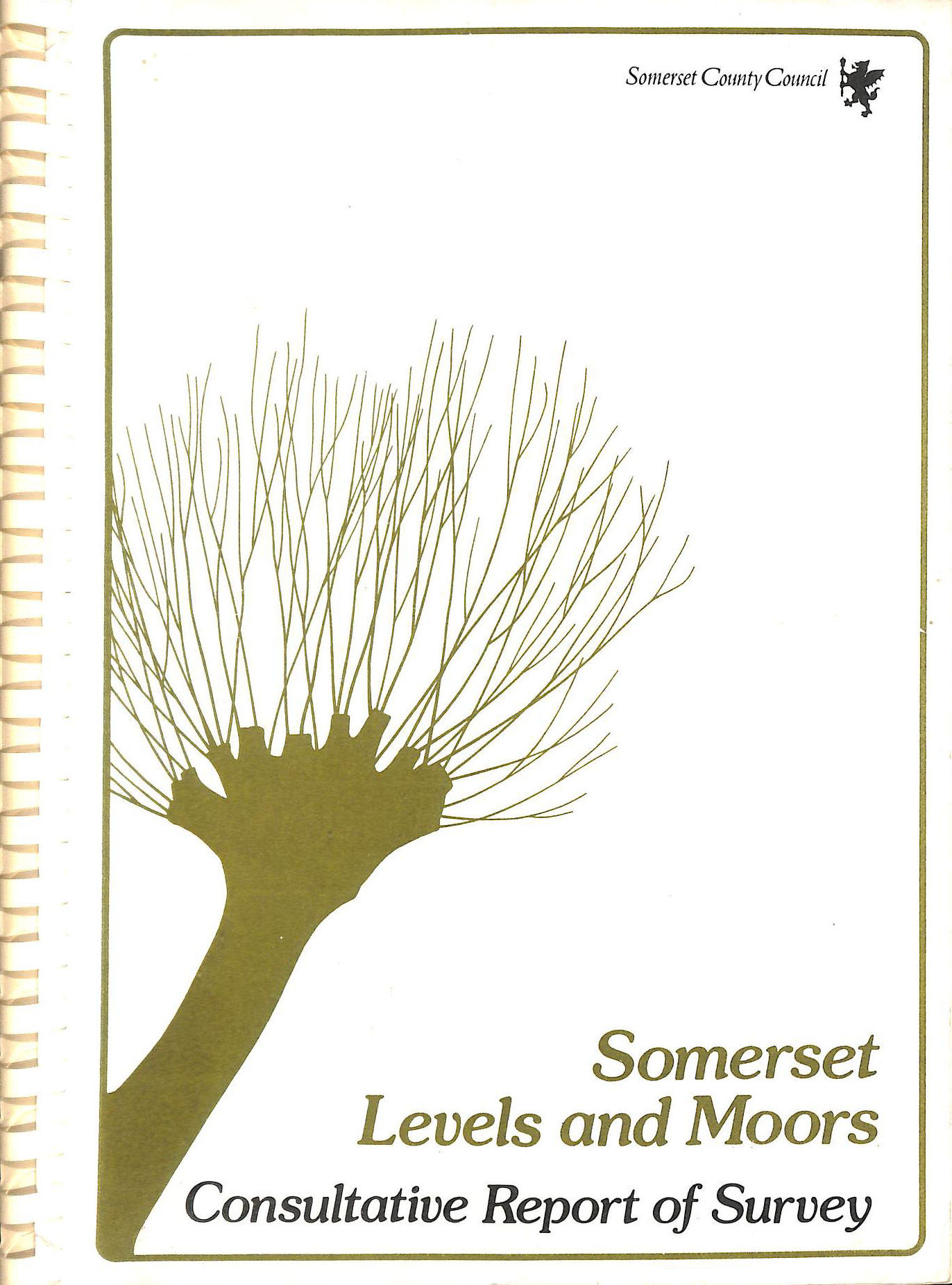 SOMERSET COUNTY COUNCIL - Countryside Subject Plan - Landscape (Levels and Moors): Consultative Report of Survey