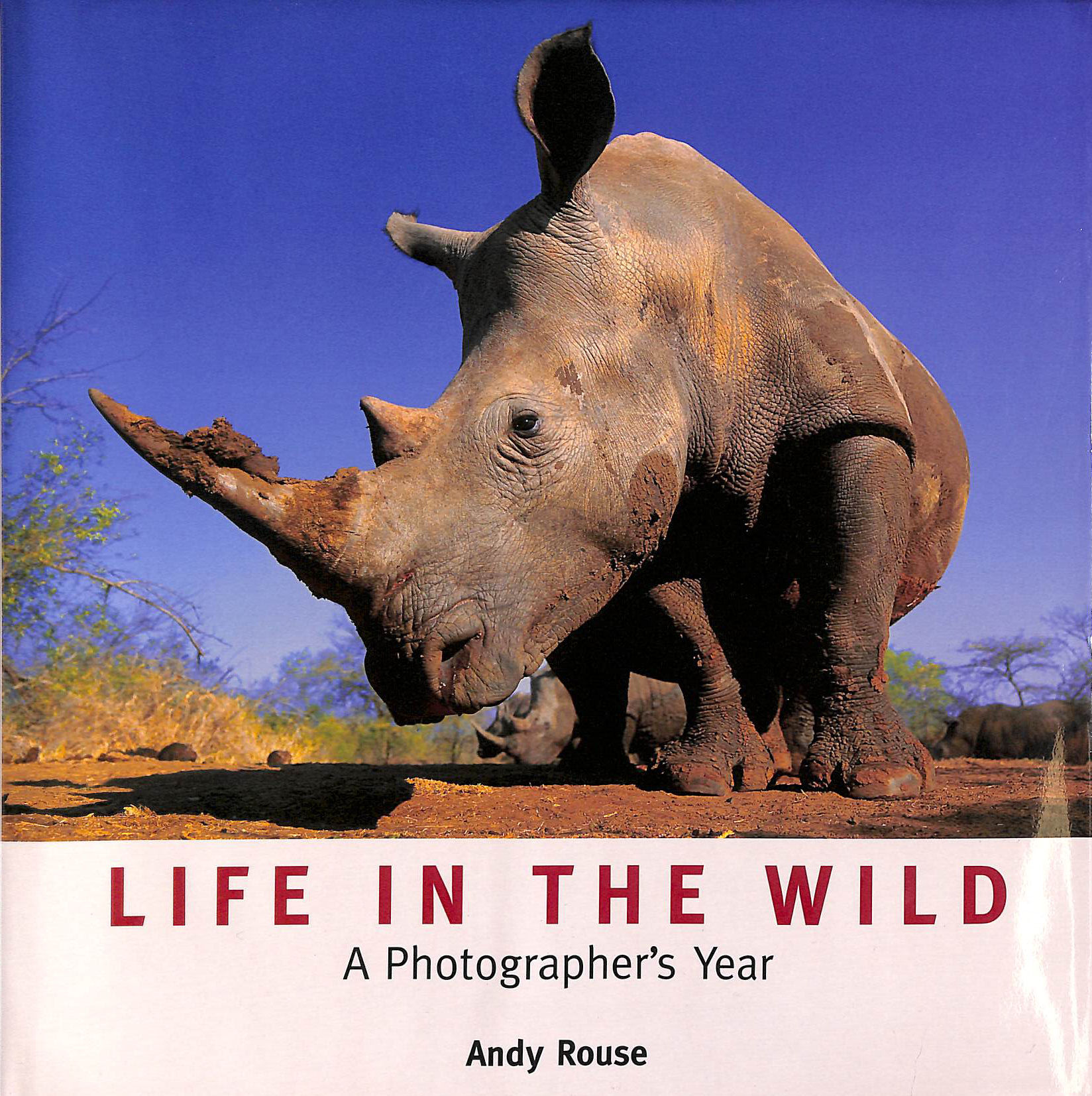 Image for Life in the Wild: A Photographer's Year