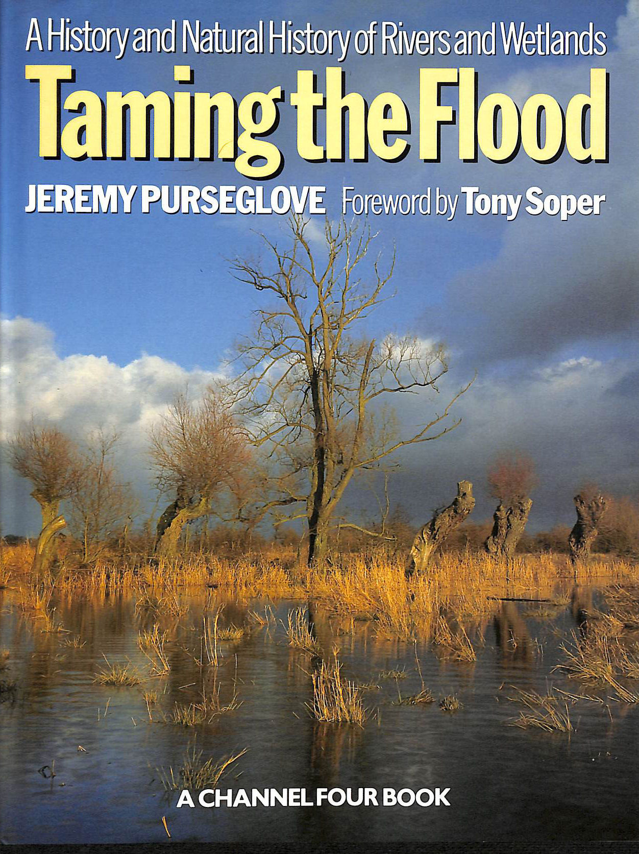 Image for Taming the Flood: History and Natural History of Rivers and Wetlands