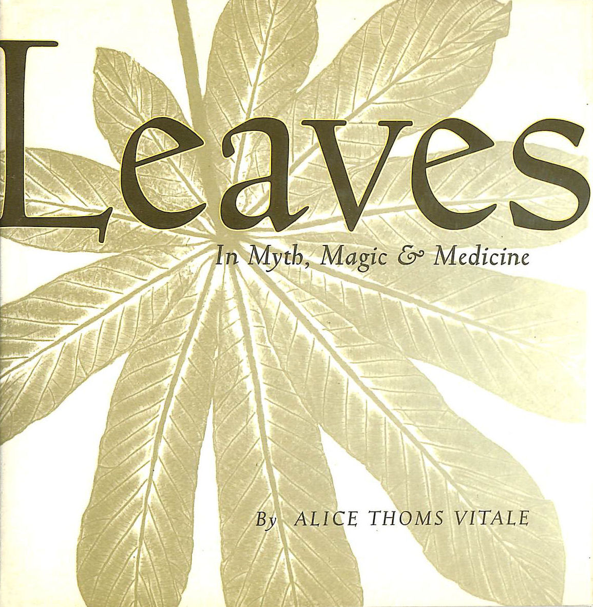 Image for Leaves: In Myth, Magic and Medicine