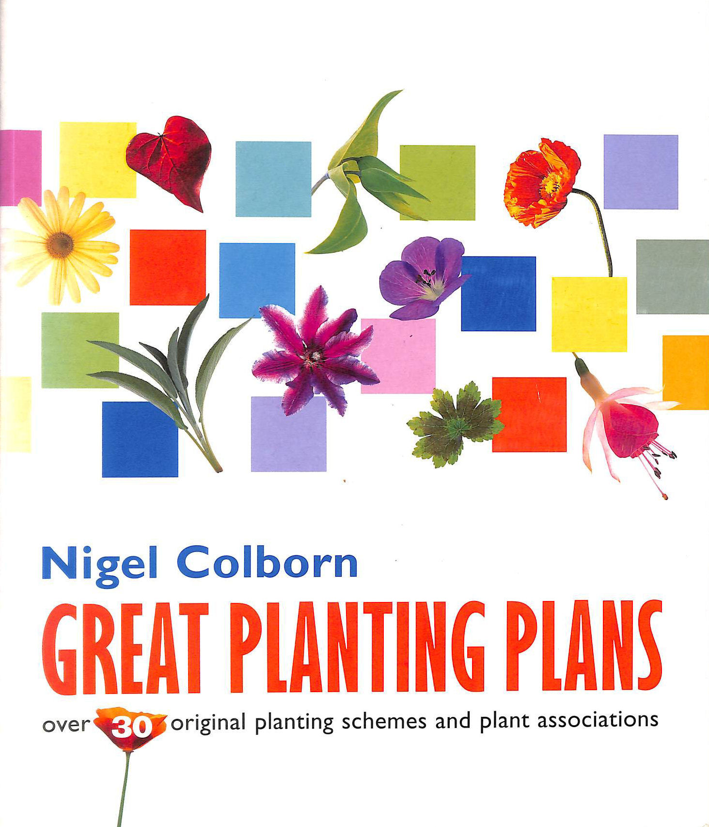 Image for Great Planting Plans: Over 30 Original Planting Schemes and Plan Associations