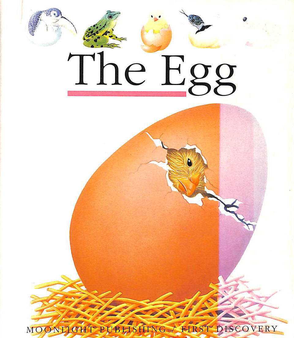 Image for The Egg (First Discovery) (First Discovery Series)