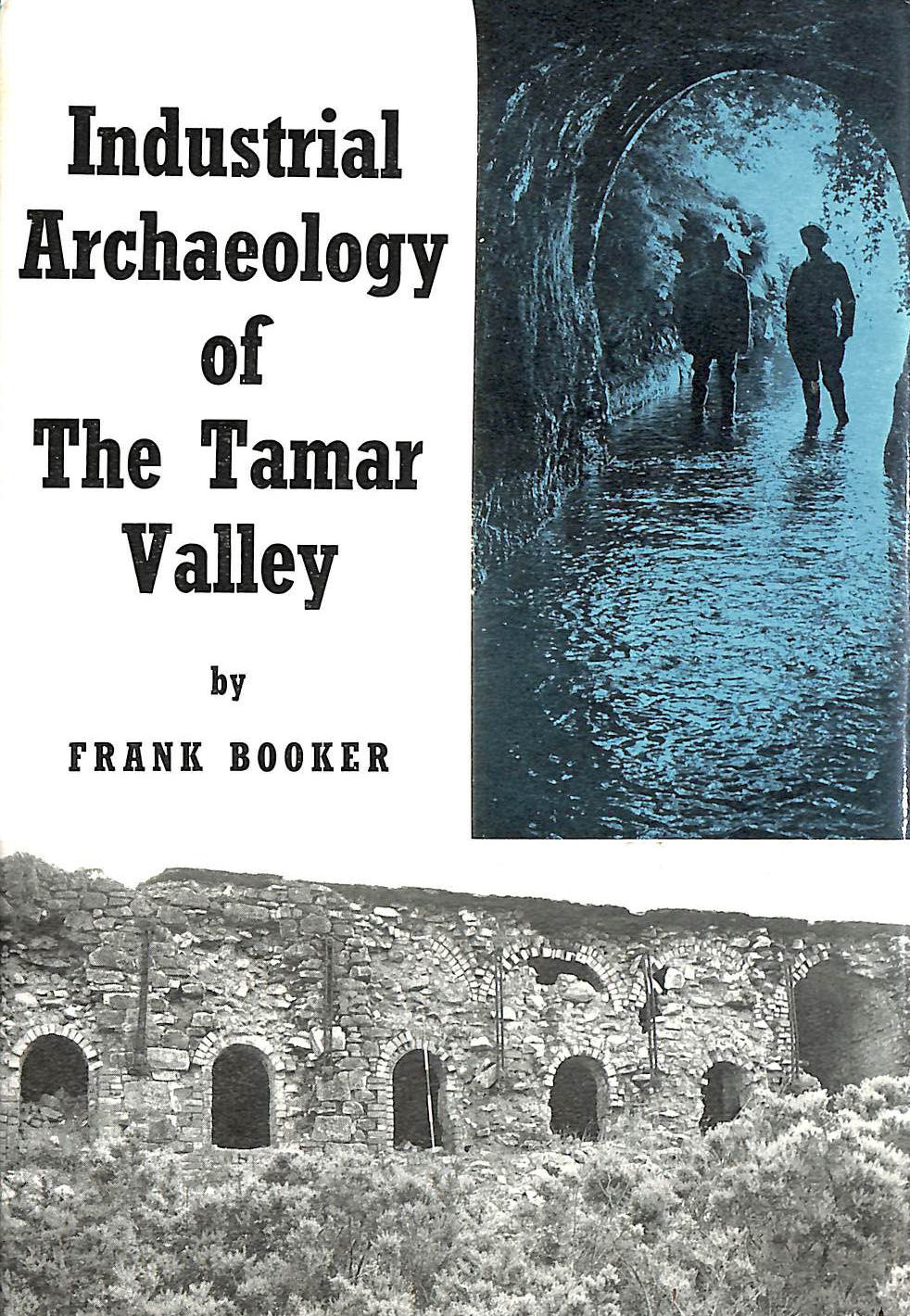 Image for Industrial Archaeology of the Tamar Valley (Industrial Archaeology of British Isles)