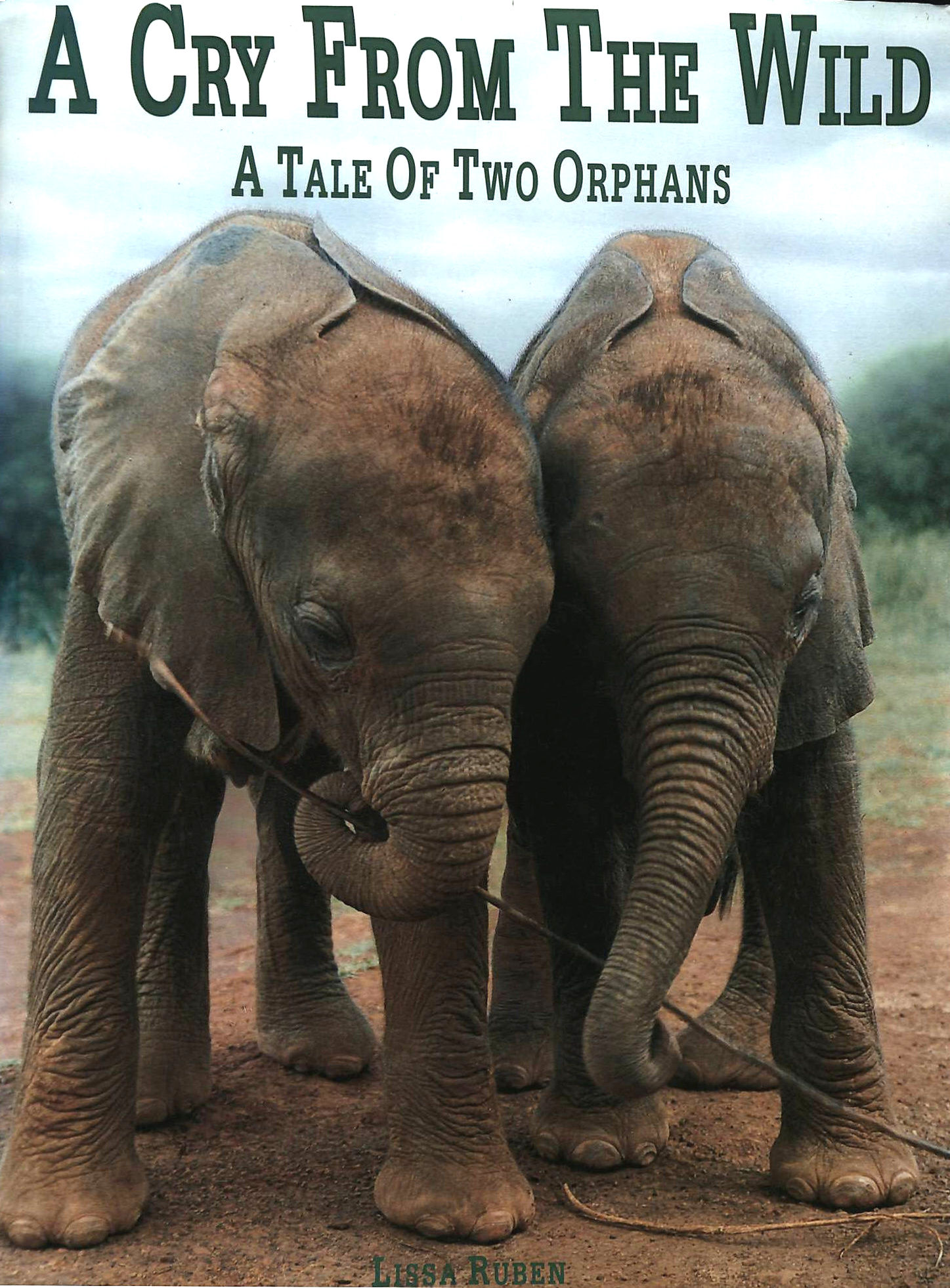 Image for Cry From The Wild: A Tale of Two Orphans