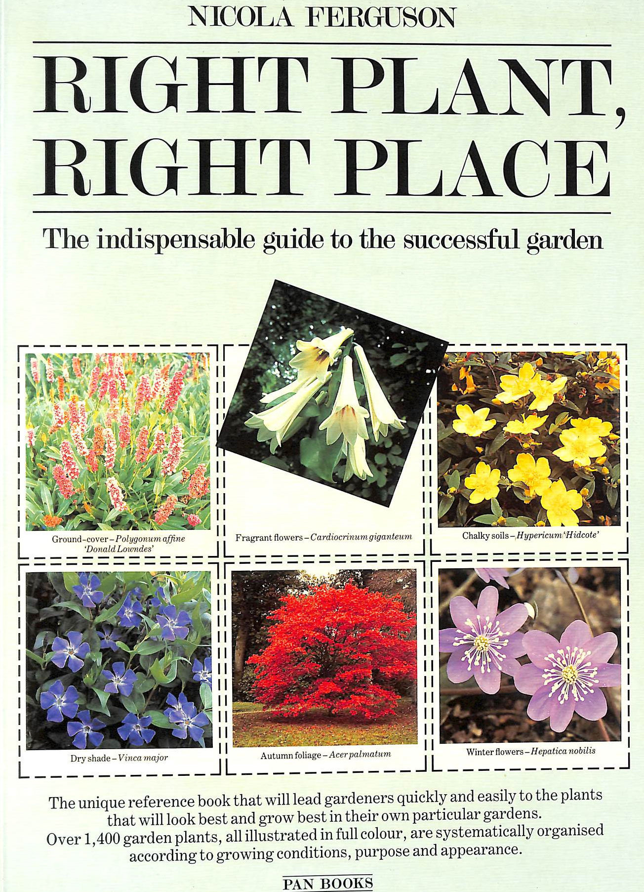 Image for Right Plant, Right Place: Over 1400 Selected Plants for Every Situation in the Garden