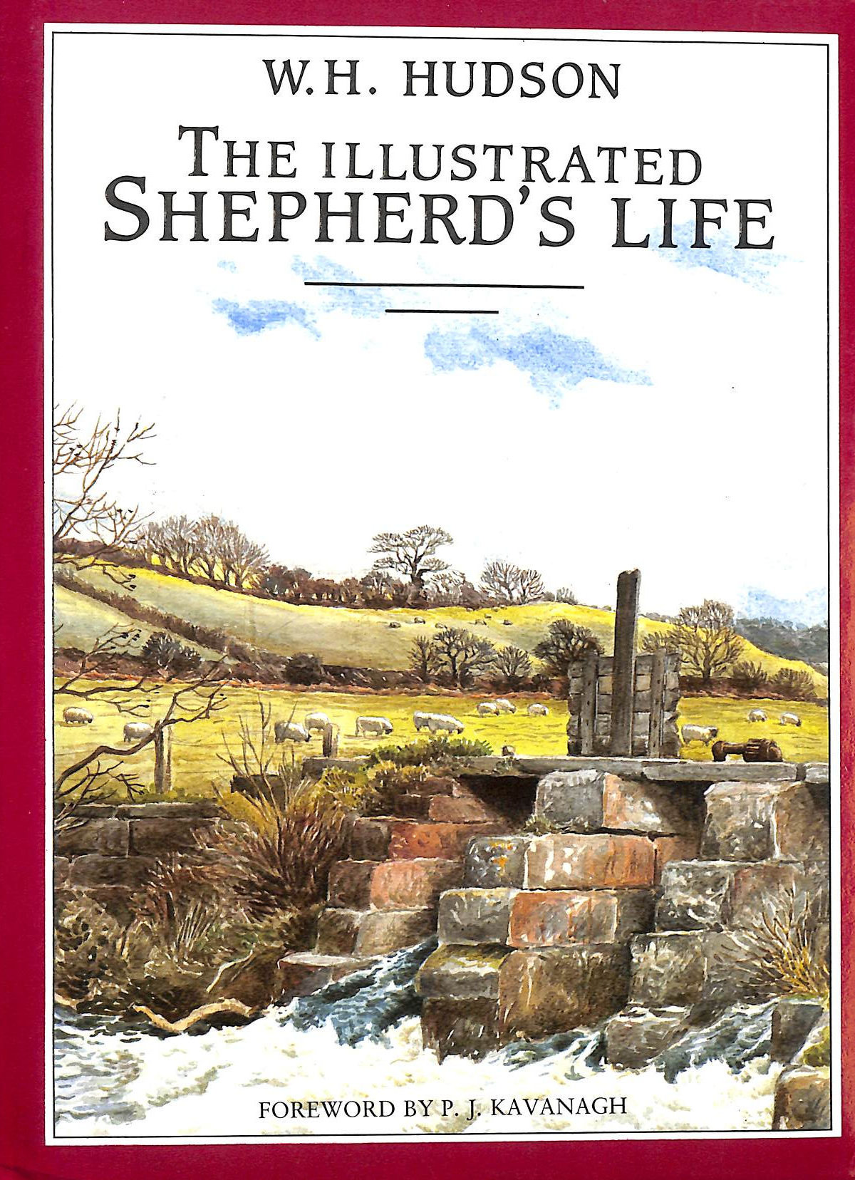 Image for The Illustrated Shepherd's Life - Impressions of the South Wiltshire Downs