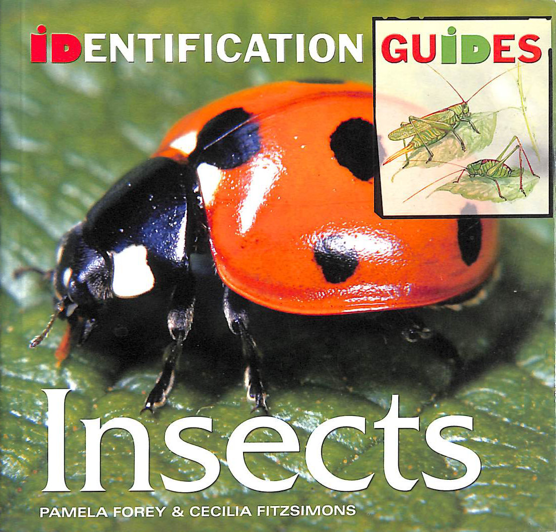 Image for Insects: Identification Guide (Identification Guides)