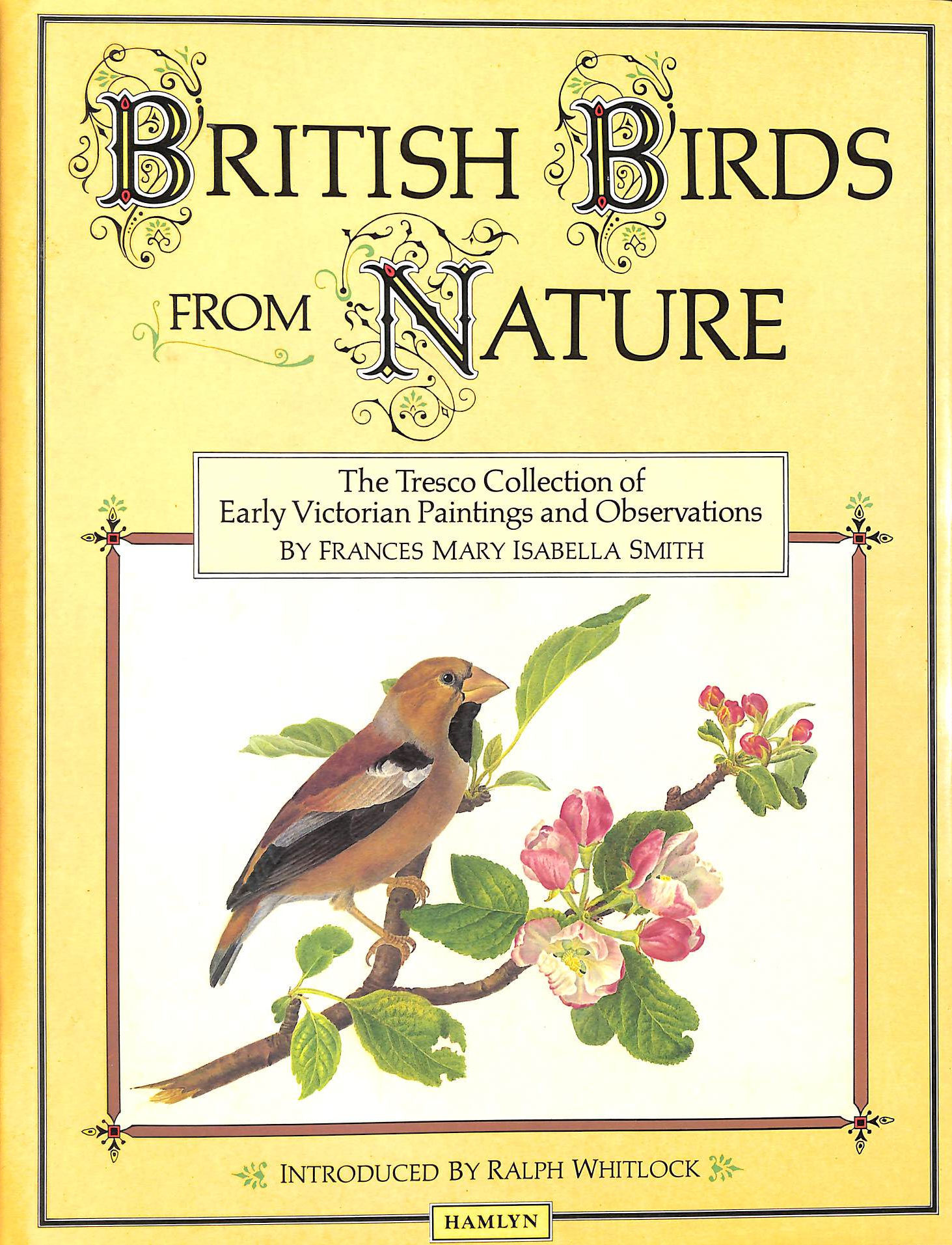 Image for British Birds from Nature