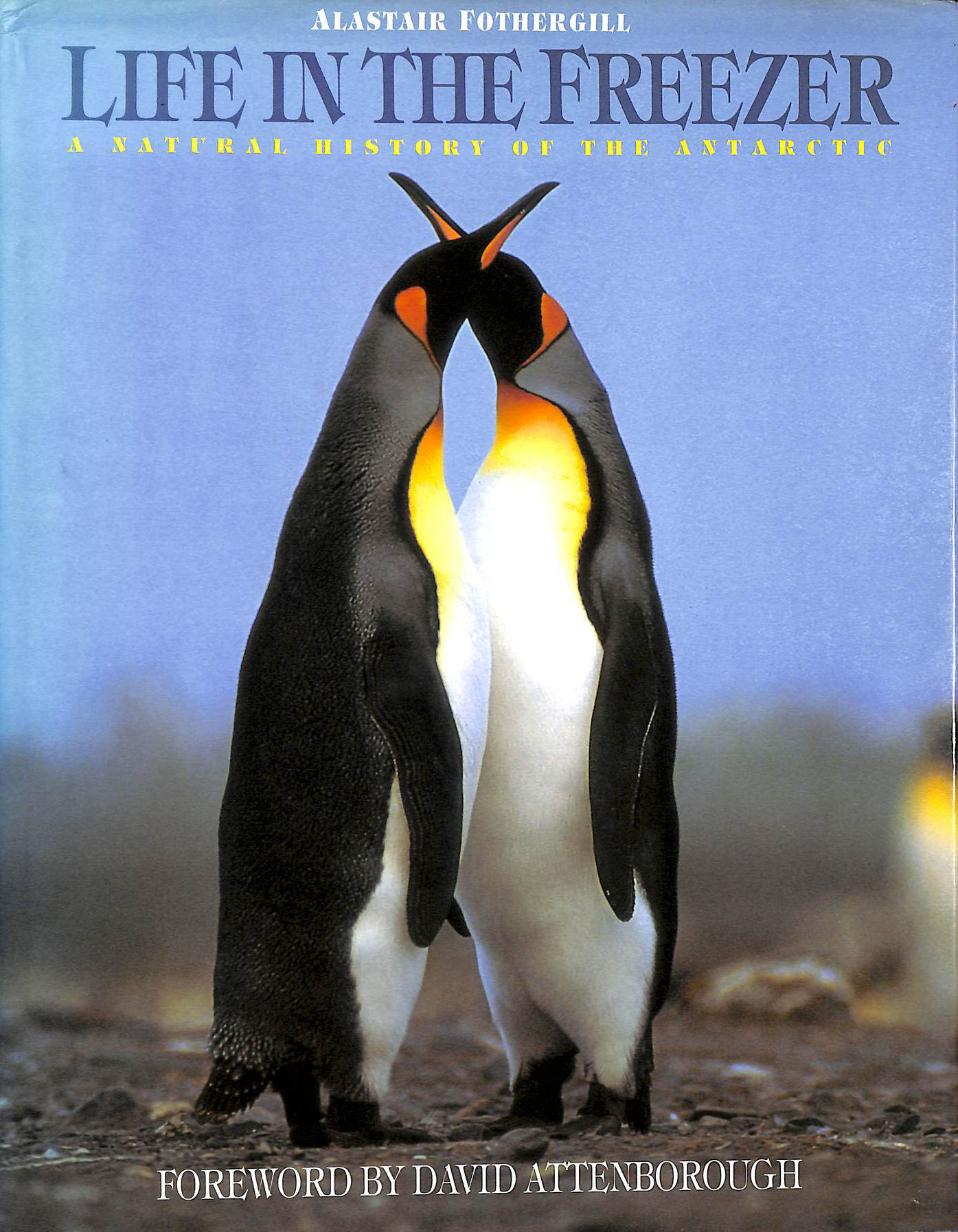 Image for Life in the Freezer: Natural History of the Antarctic
