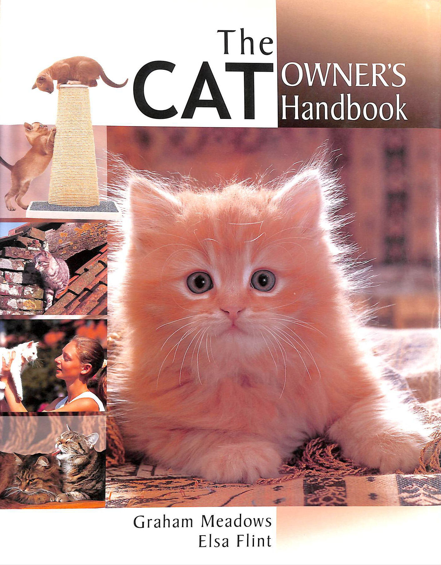 Image for The Cat Owner's Handbook