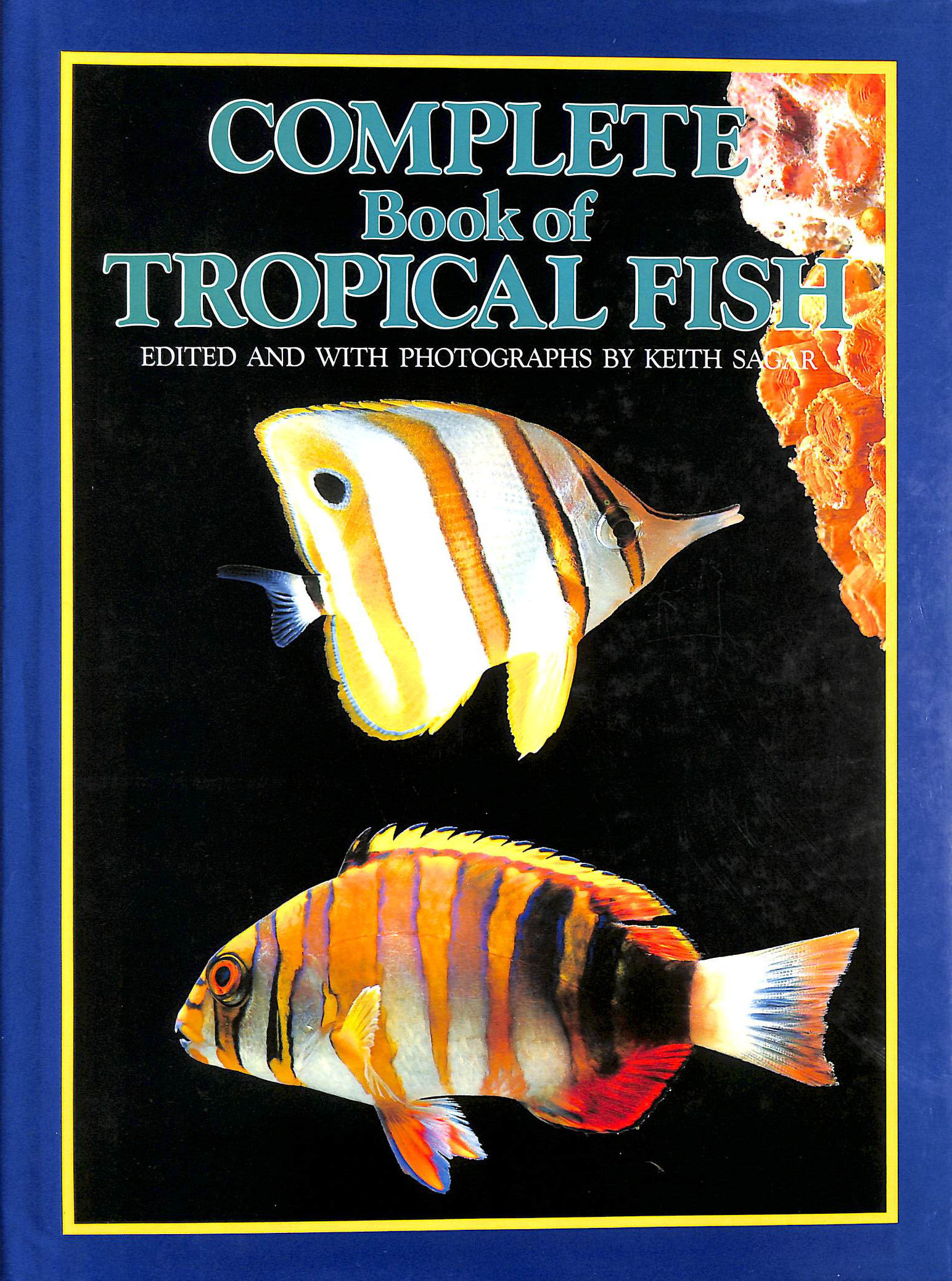Image for Complete Book Of Tropical Fish.