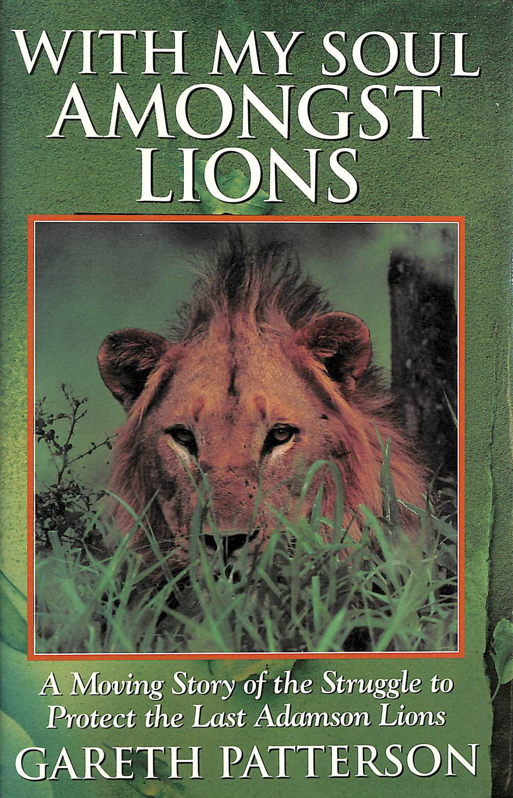 Image for With My Soul Amongst Lions: Moving Story of the Struggle to Protect the Last Adamson Lions