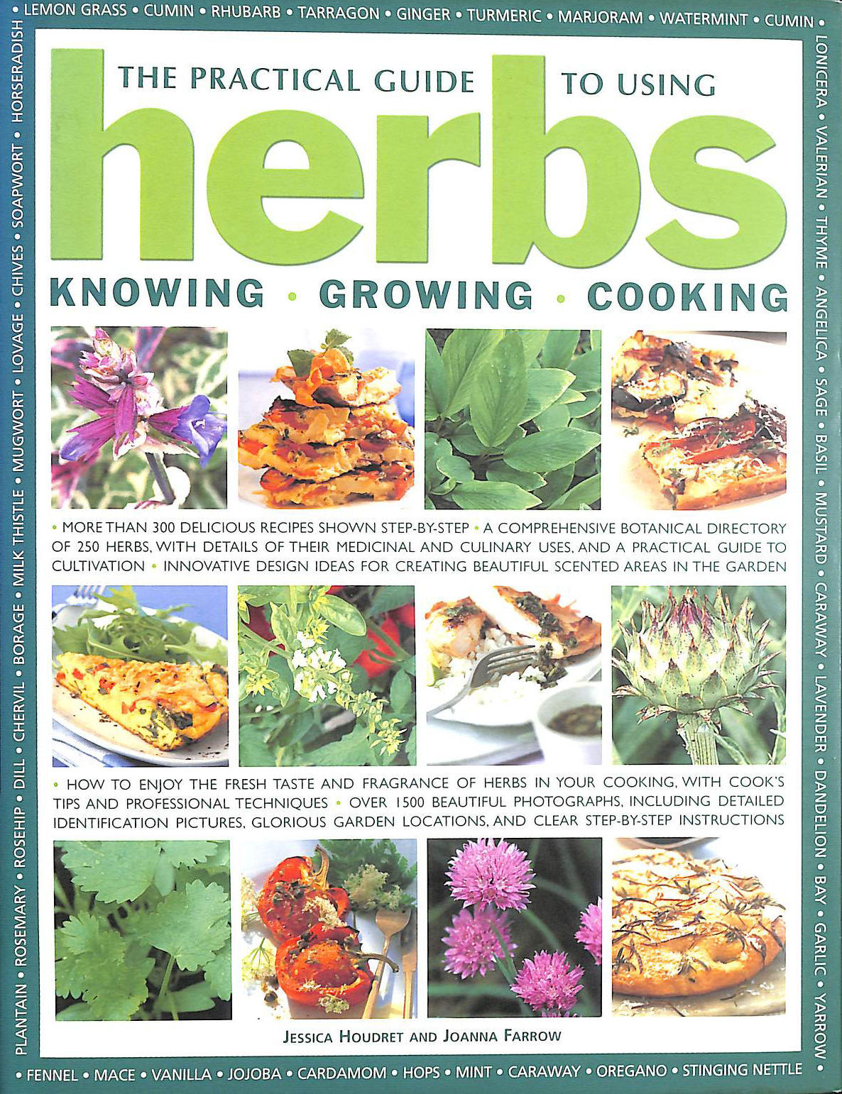 Image for The Practical Guide to Using Herbs: Knowing, Growing, Cooking